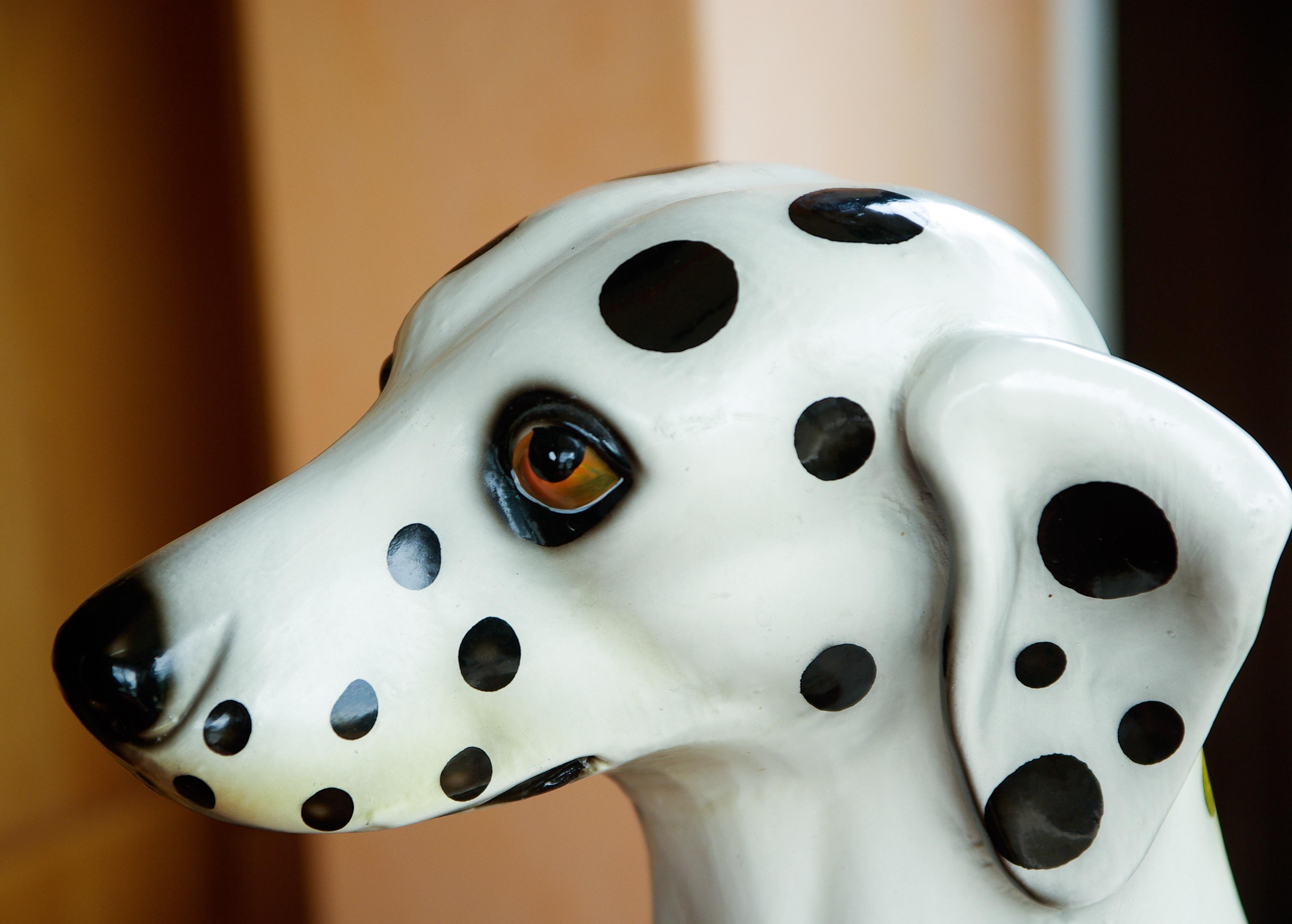 Fotos gratis : blanco, perro, estatua, patrón, ropa, máscara, hocico ...