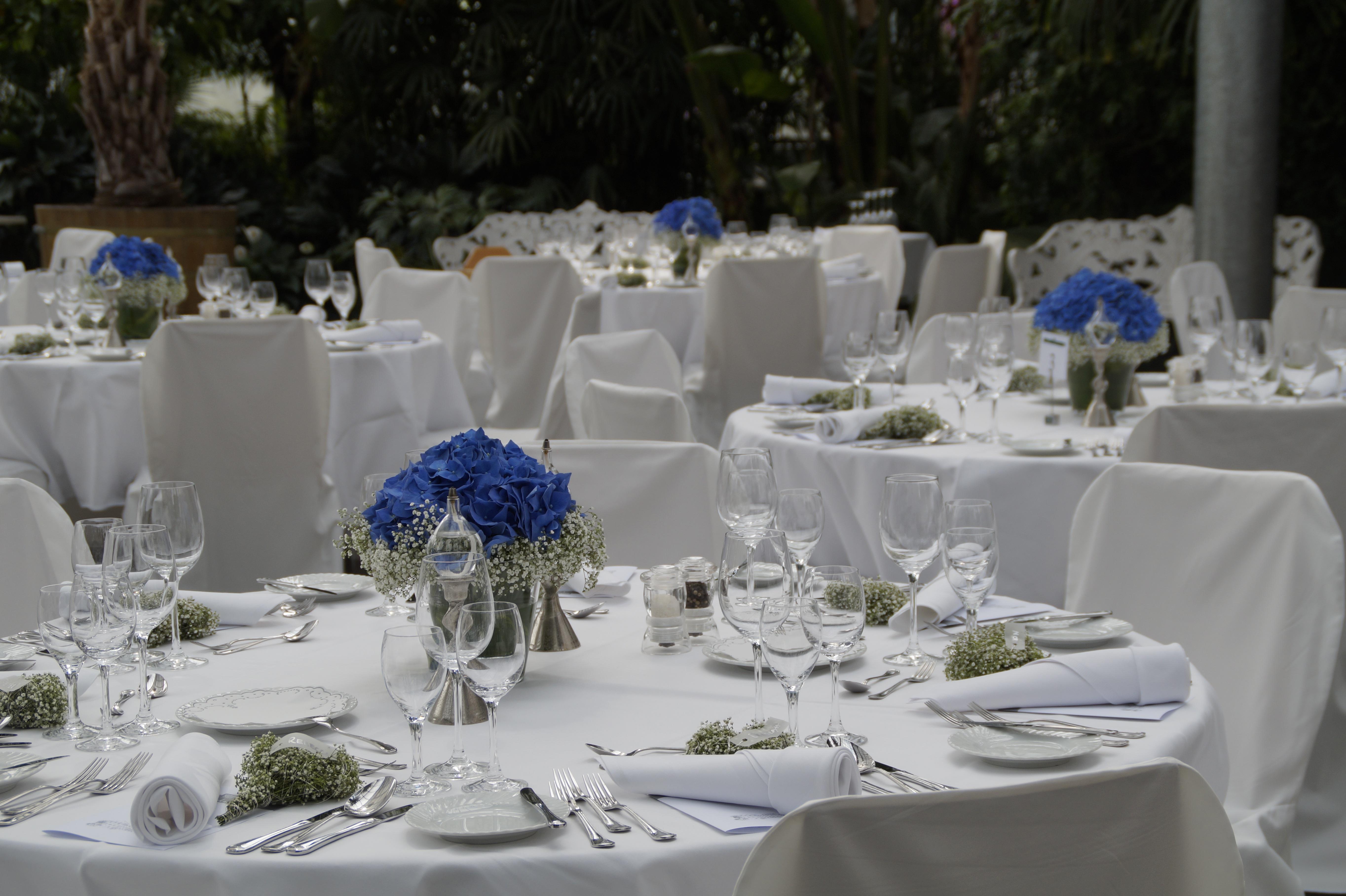 Kostenlose Foto Weiss Blume Feier Mahlzeit Bedeckt Hochzeit