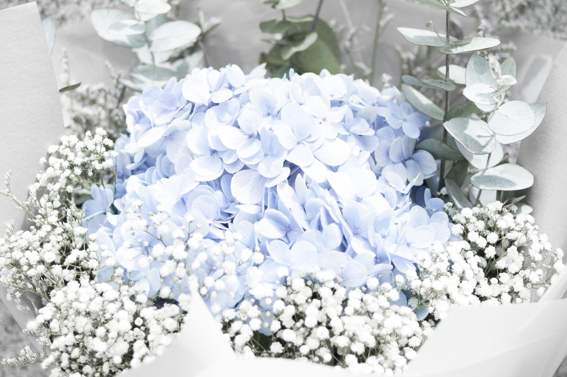 Free images white petal blue arrangement bright crystal white flower petal bouquet blue wedding flowers arrangement bright crystal bouquet of flowers wedding flowers flower izmirmasajfo