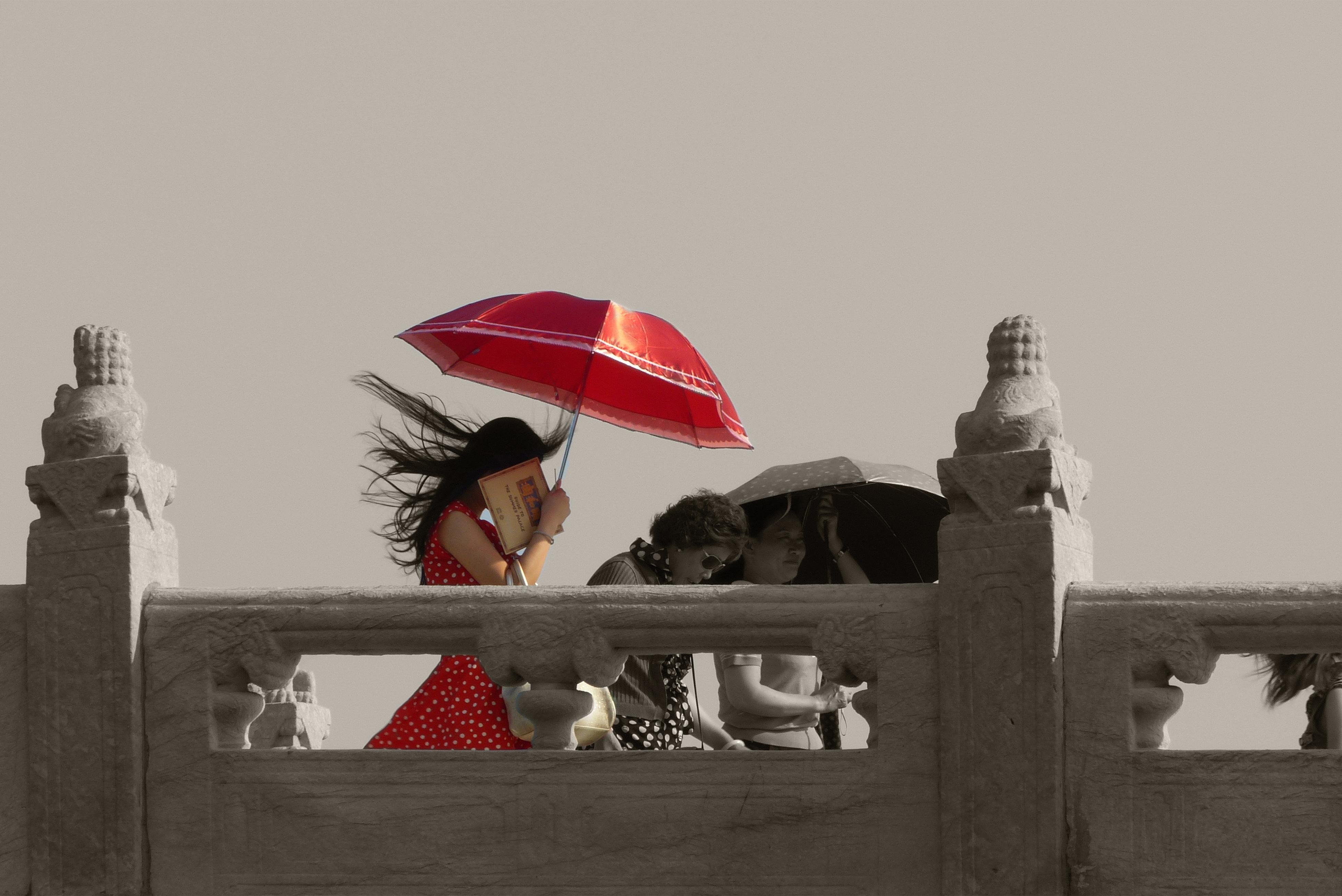 Free Images White Red Umbrella Color Black Monochrome Sunny