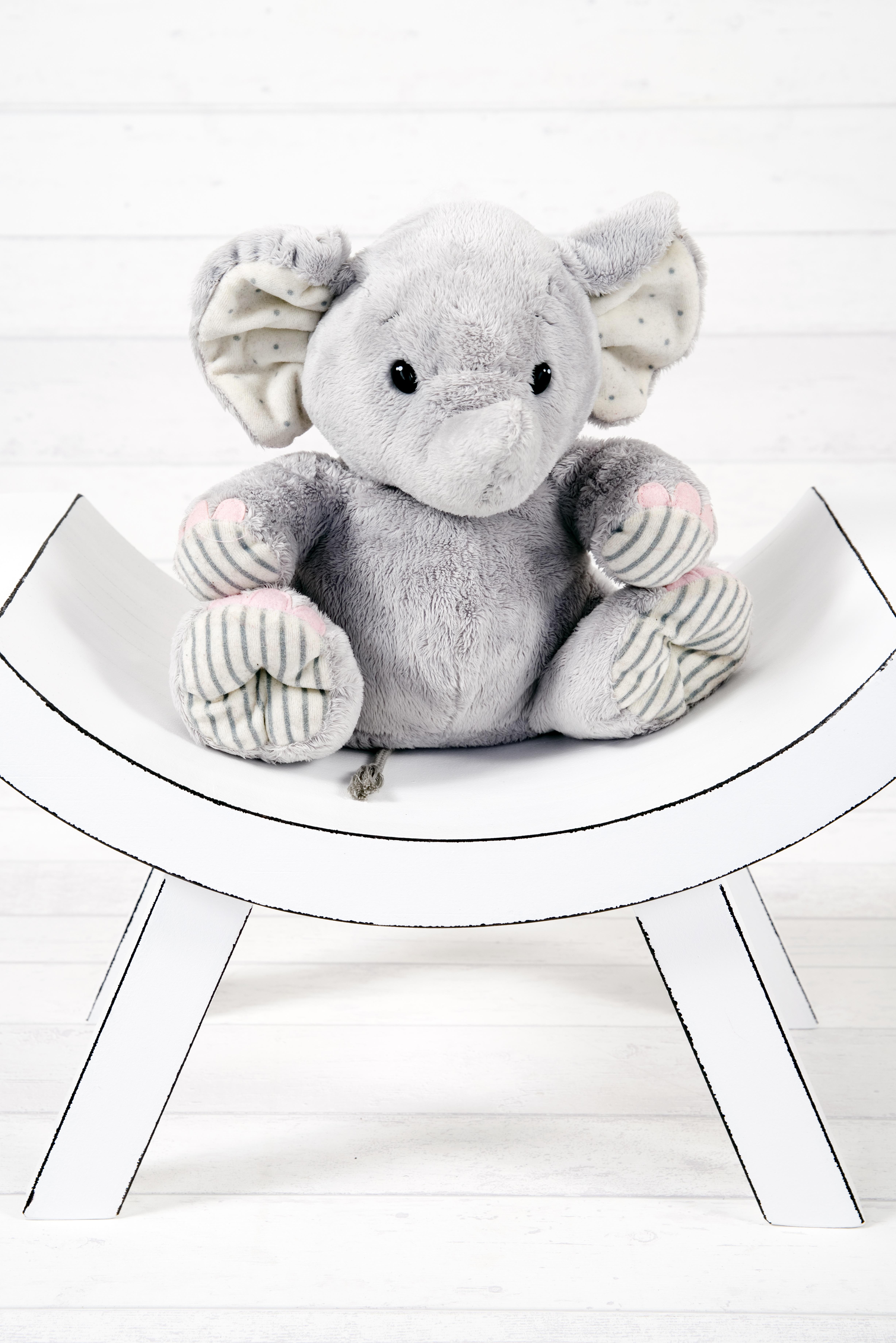 Gambar Putih Duduk Studio Mainan Gajah Beruang Teddy