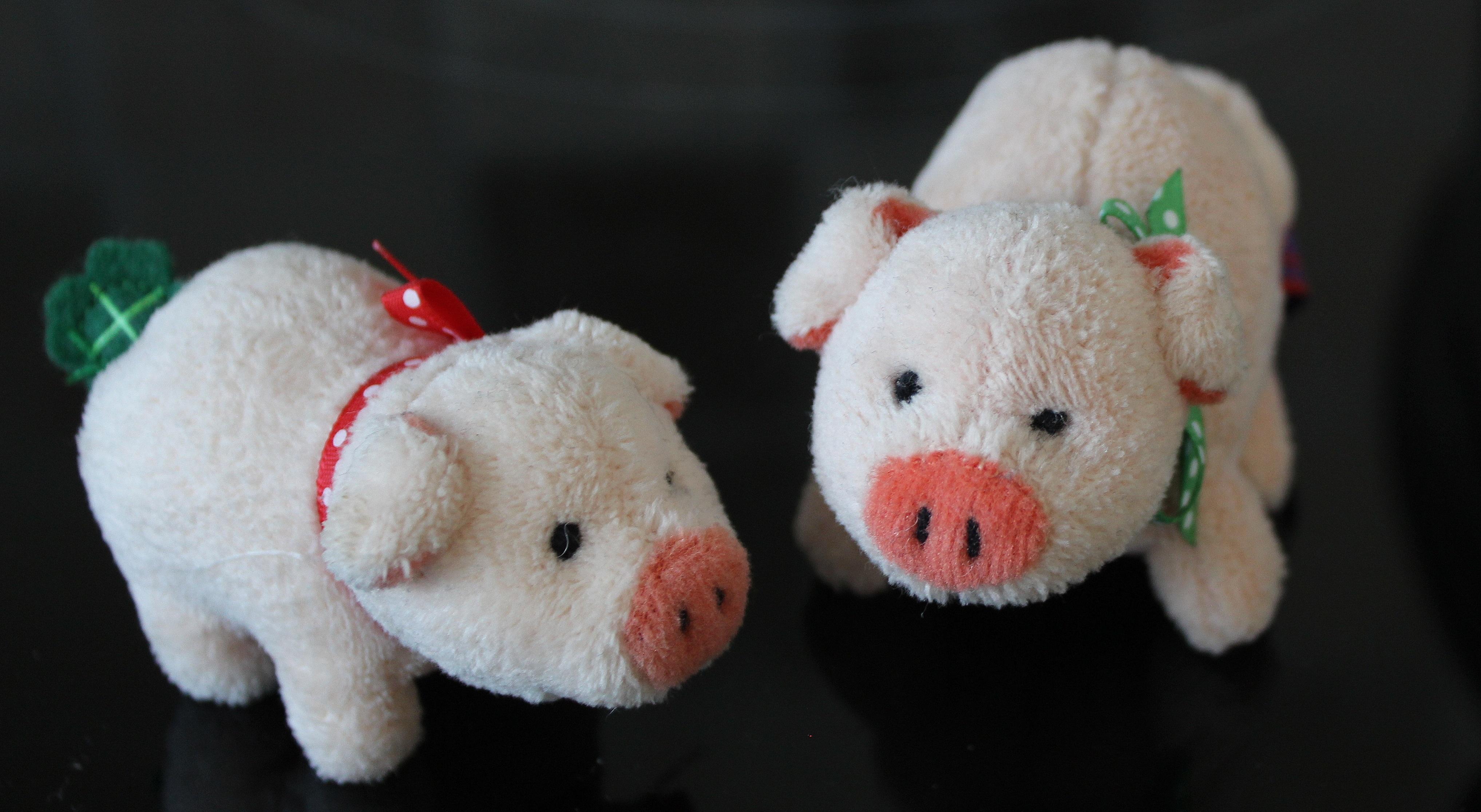 Kostenlose Foto Weiß Süß Niedlich Rosa Spielzeug Material