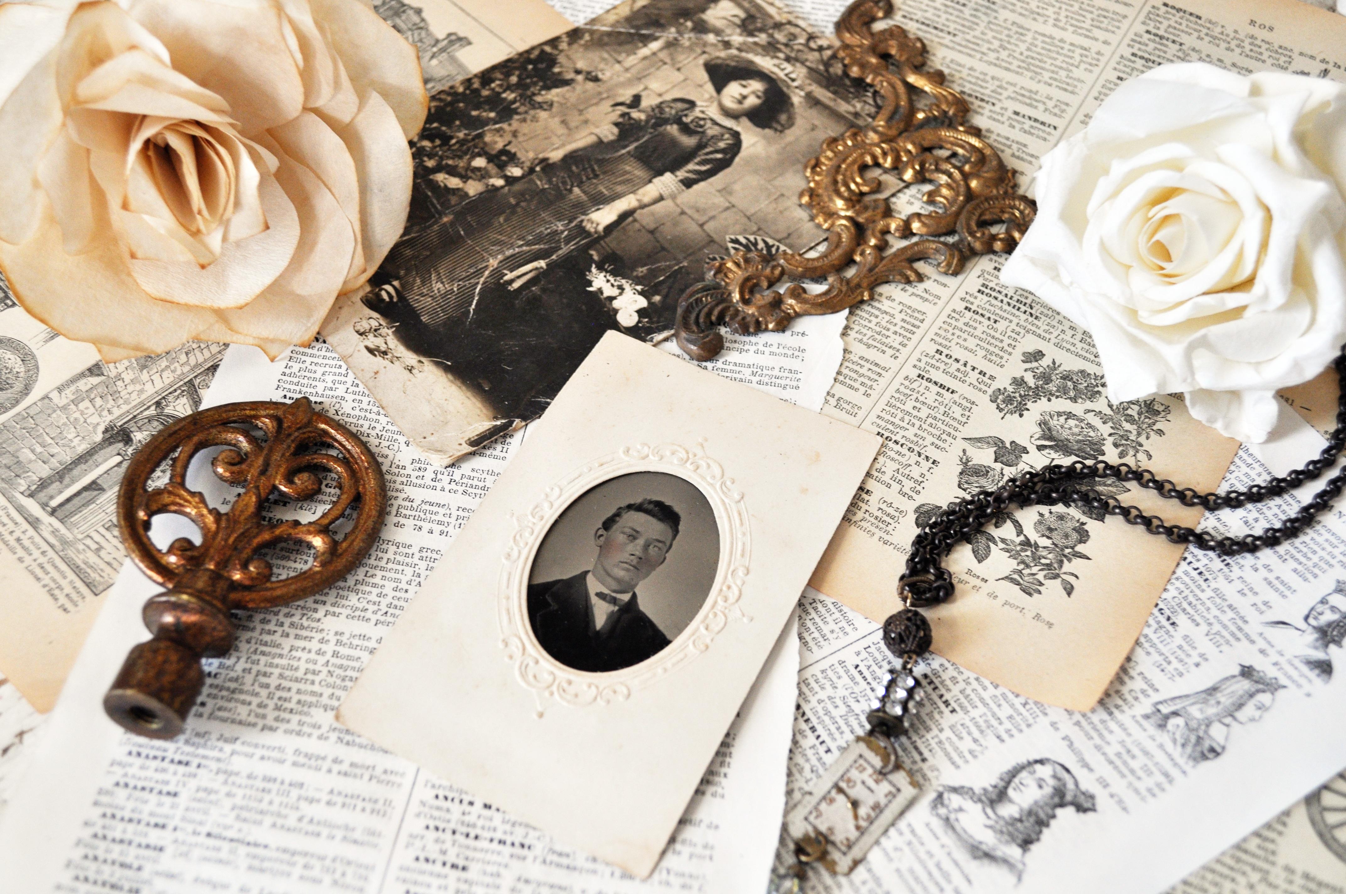 Kostenlose foto : weiß jahrgang antiquität blume alt foto rose