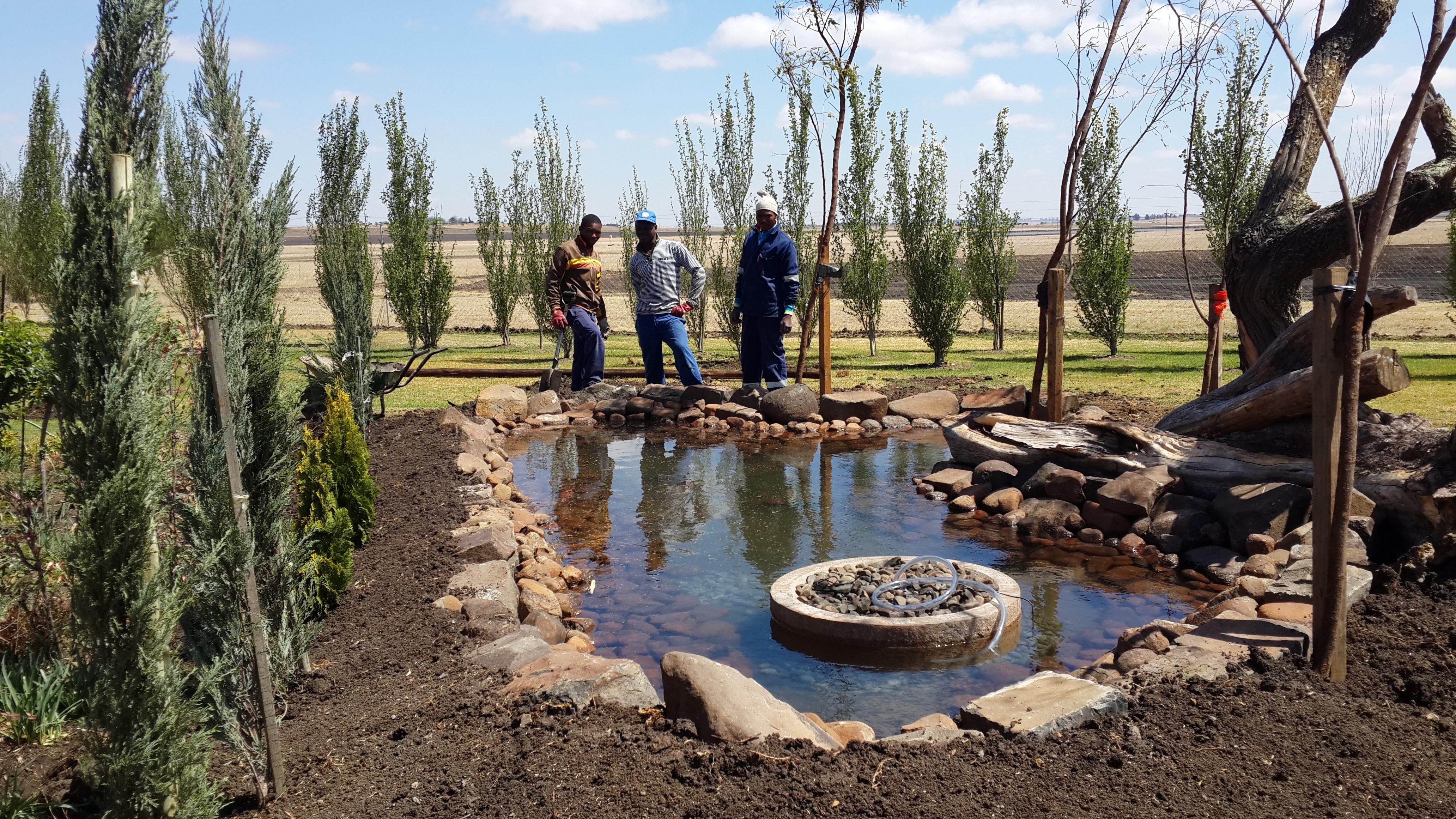 Fotos gratis desierto piscina humedal artificial for Estanques de pescados
