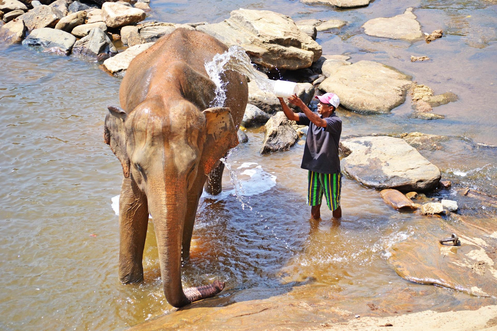 zdarma sri lanka připojte se k ugandě
