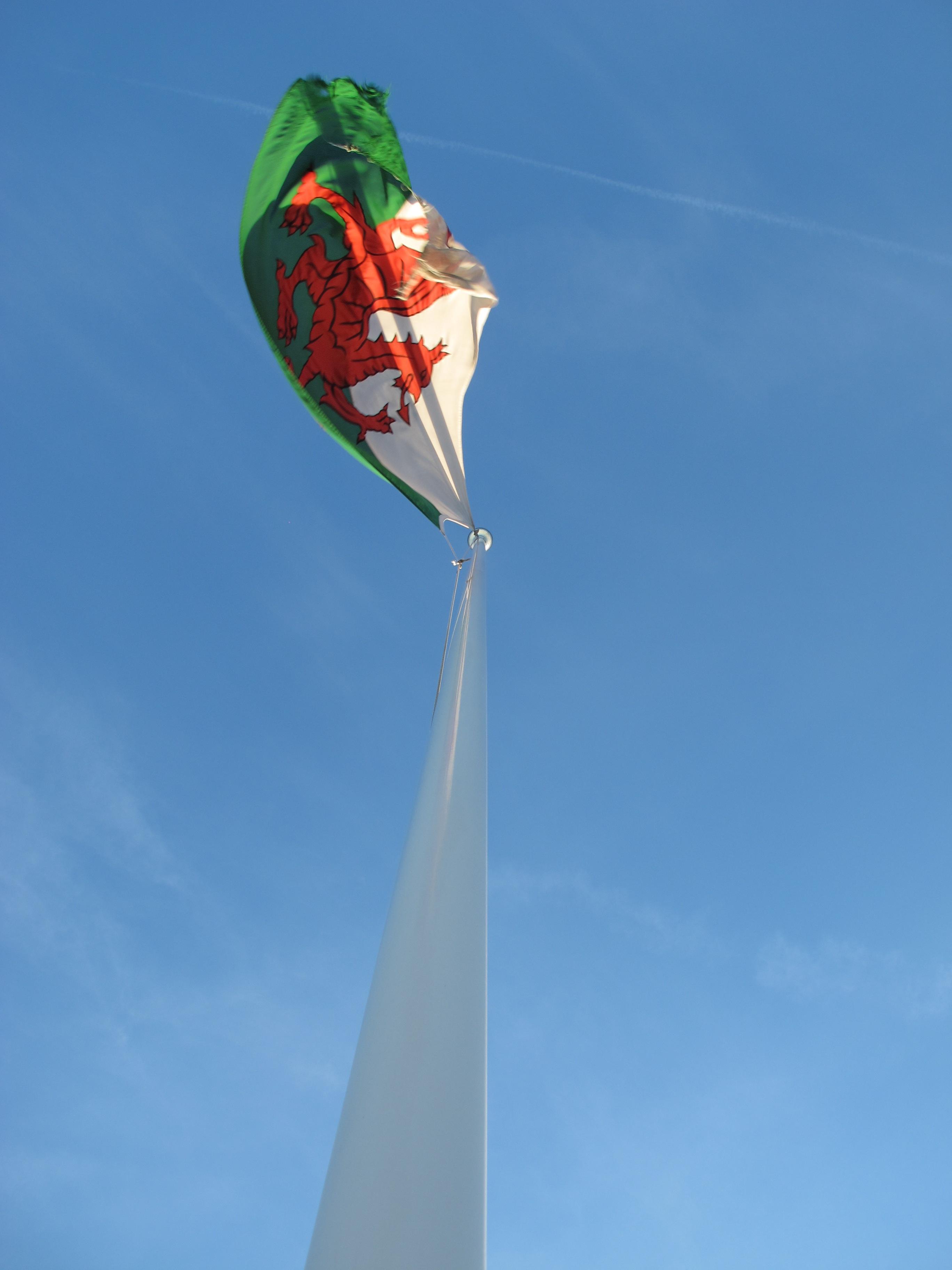 Fotos gratis : viento, mástil, bandera, azul, juguete, emblema ...