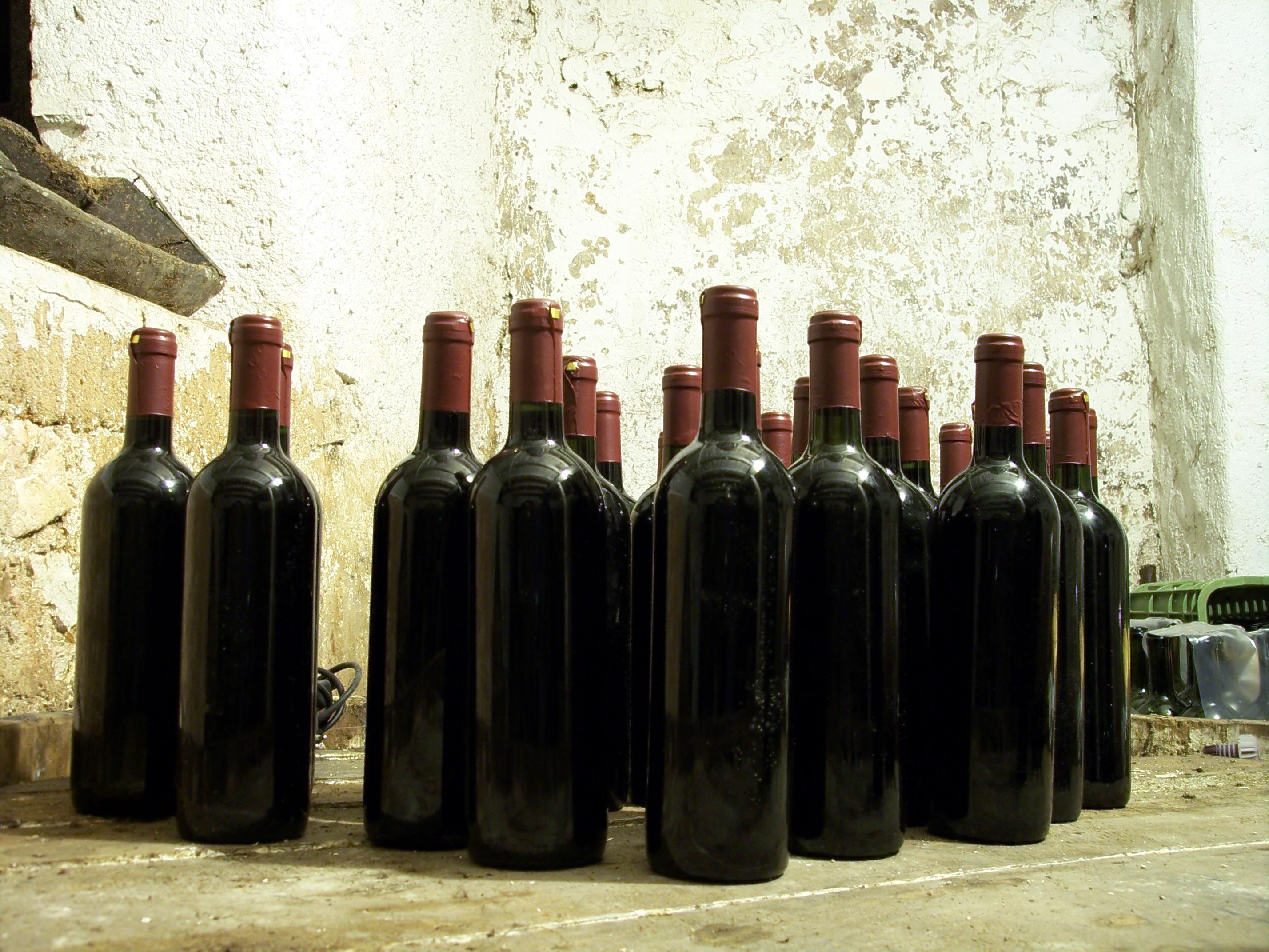 удовиченко картинки вина в бутылке дома принял