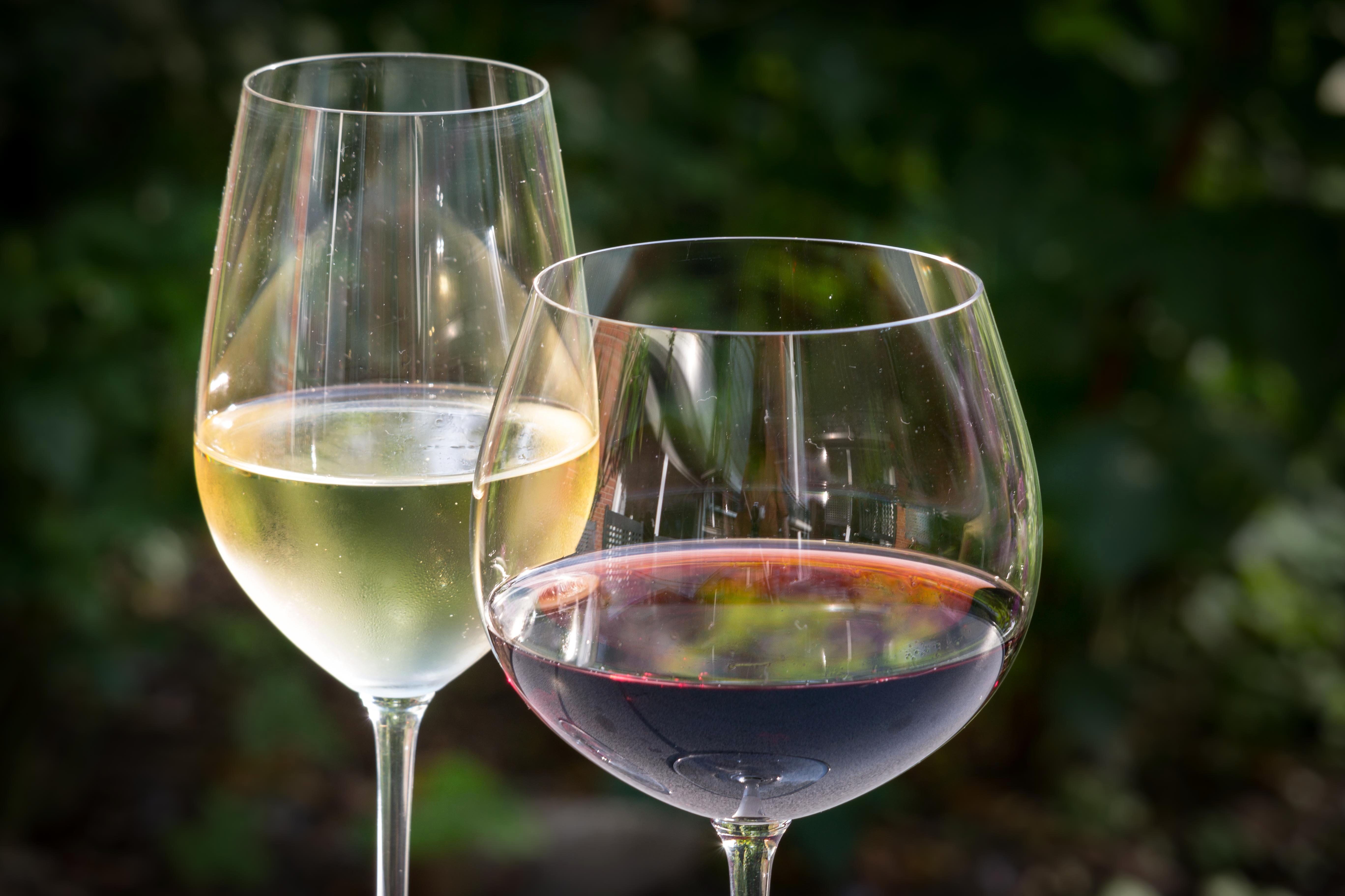 Weingläser Rot kostenlose foto wein glas rot rotwein material weinglas