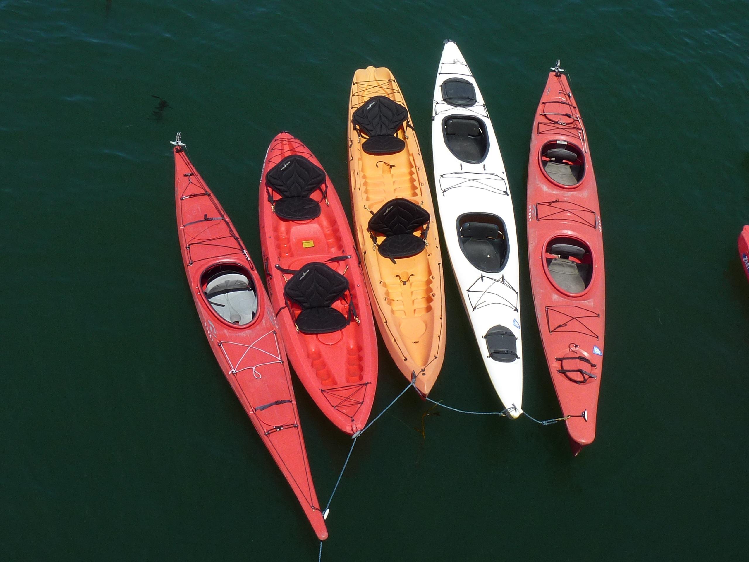 Kostenlose foto : Flügel, Boot, Kanu, rot, Fahrzeug, Farbe ...