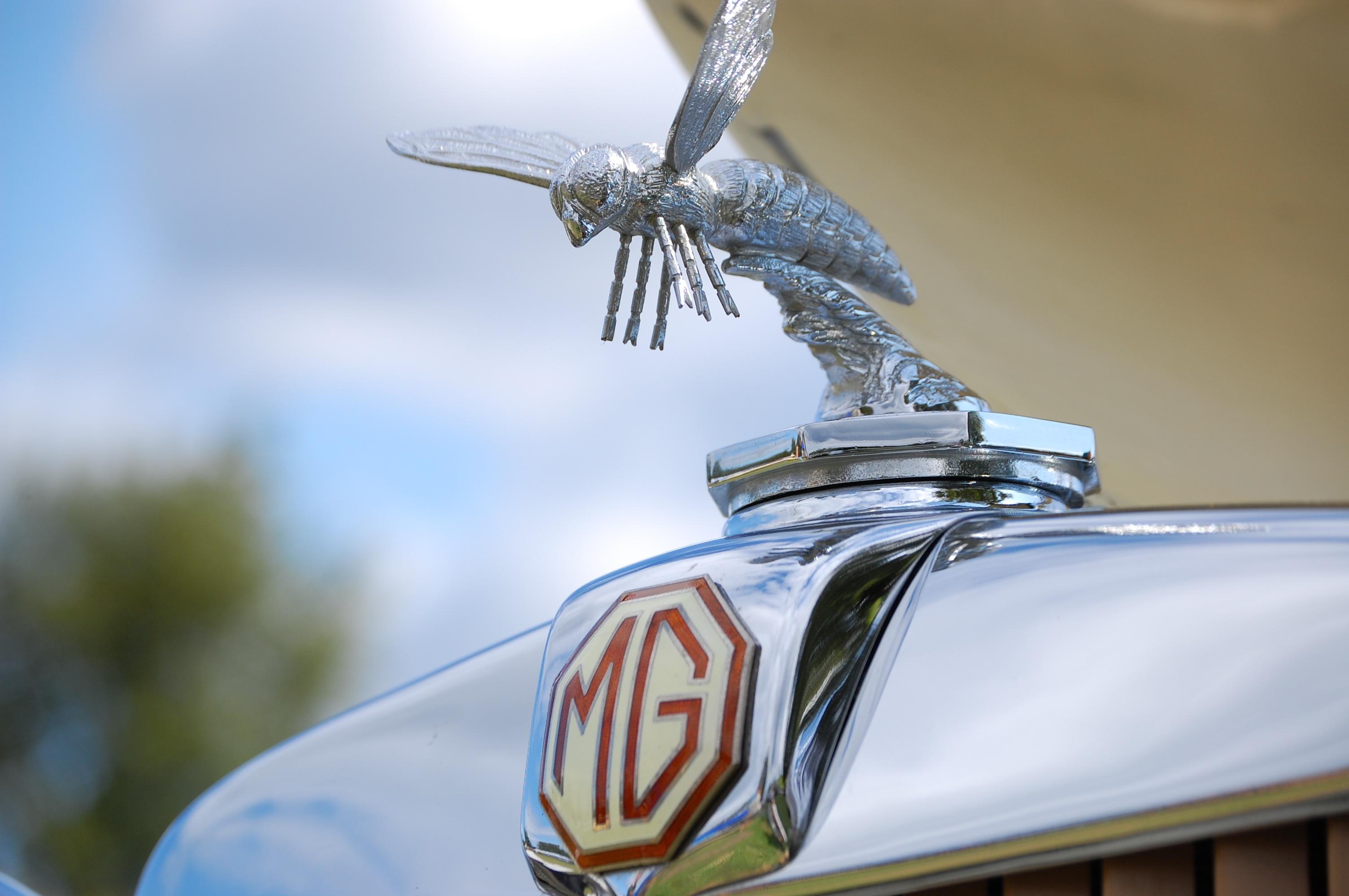 Free Images Wing Car Vintage Antique Automobile Vehicle Auto