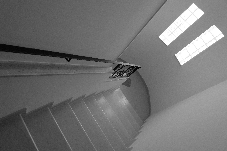 Gratis afbeeldingen vleugel licht zwart en wit architectuur