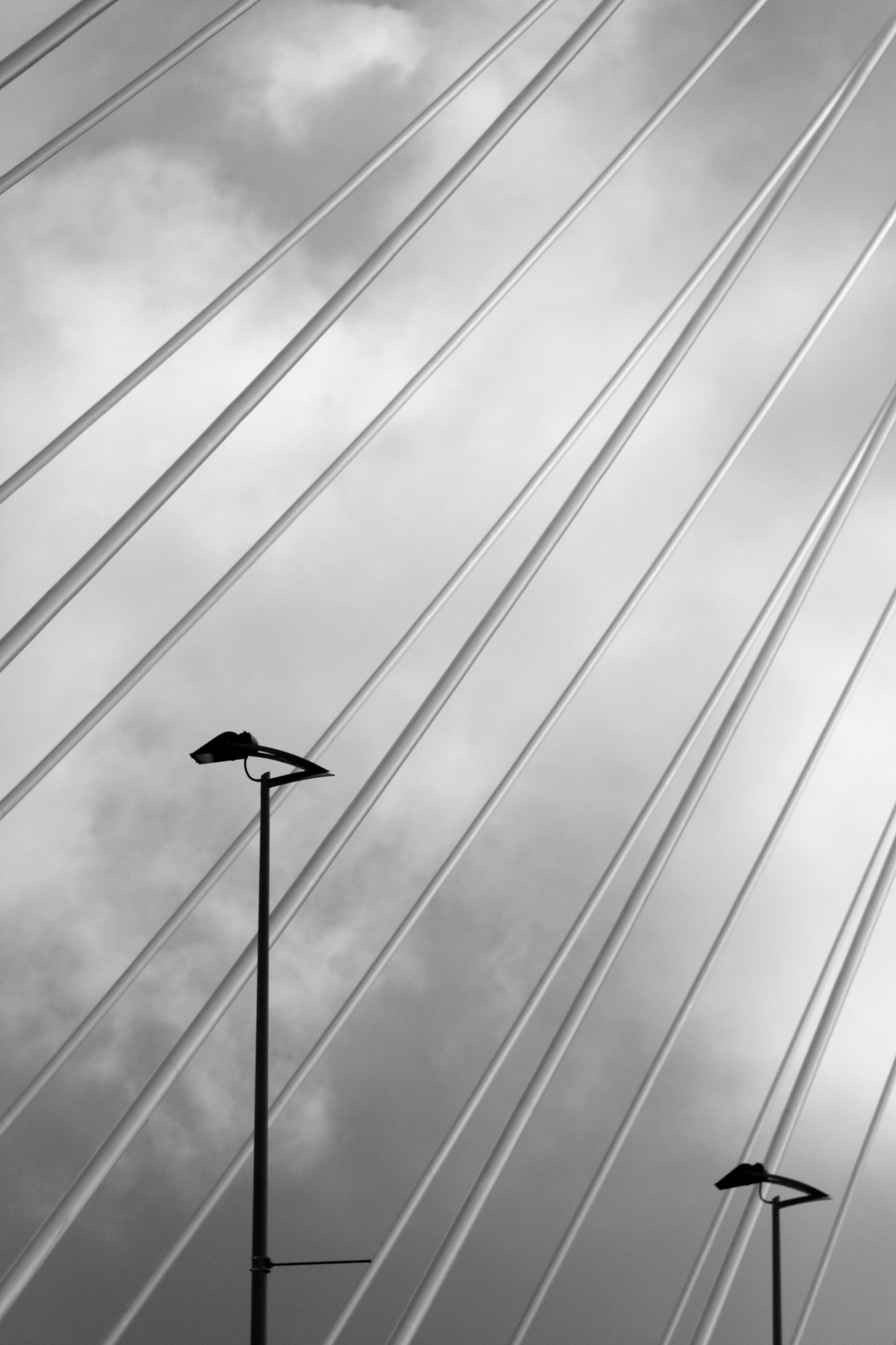 Wing Light Black And White Bridge Sunlight Wall Ceiling Line Reflection Street Monochrome