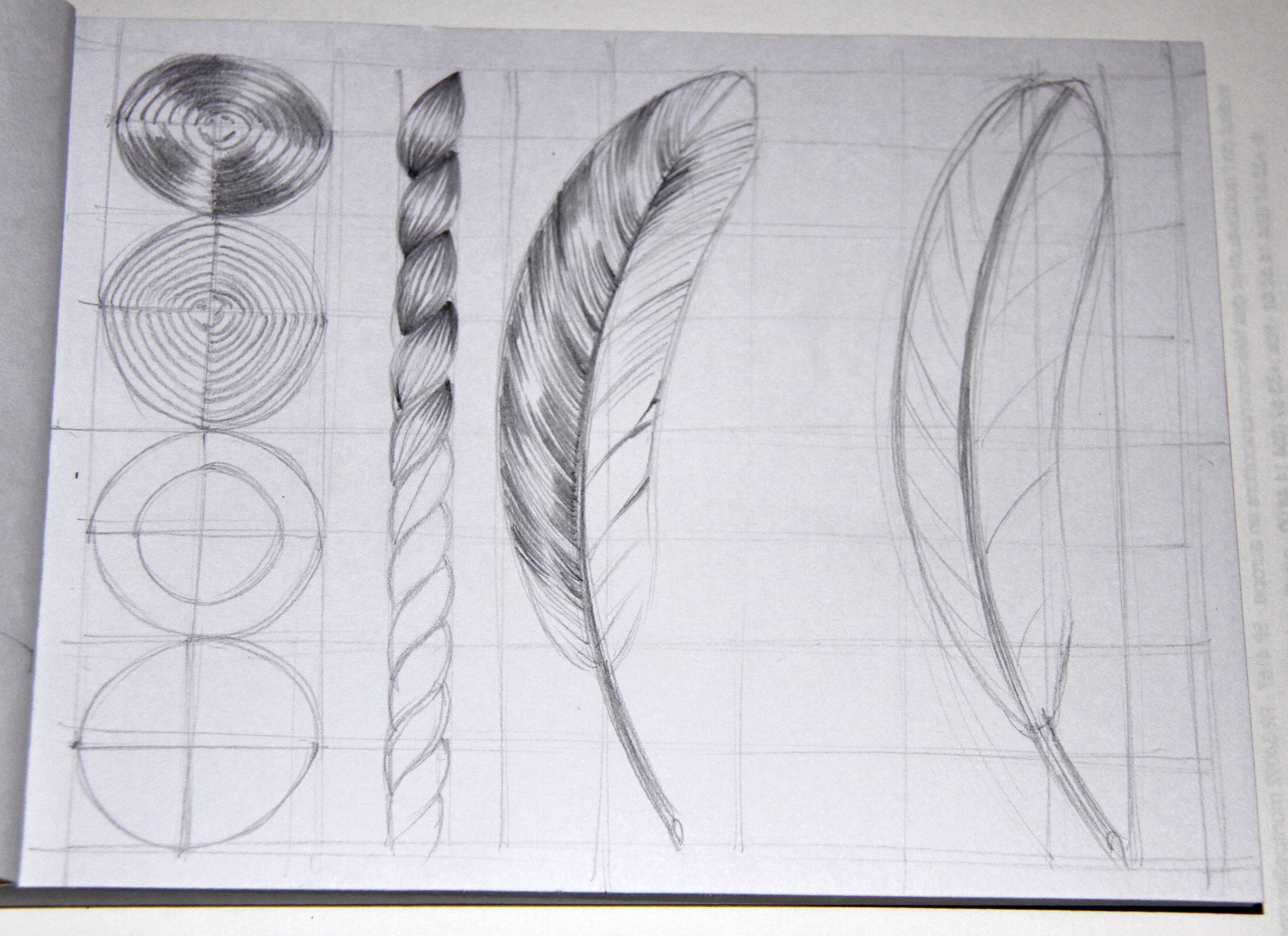 Free Images Wing Line Material Circle Artwork Sketch Drawing