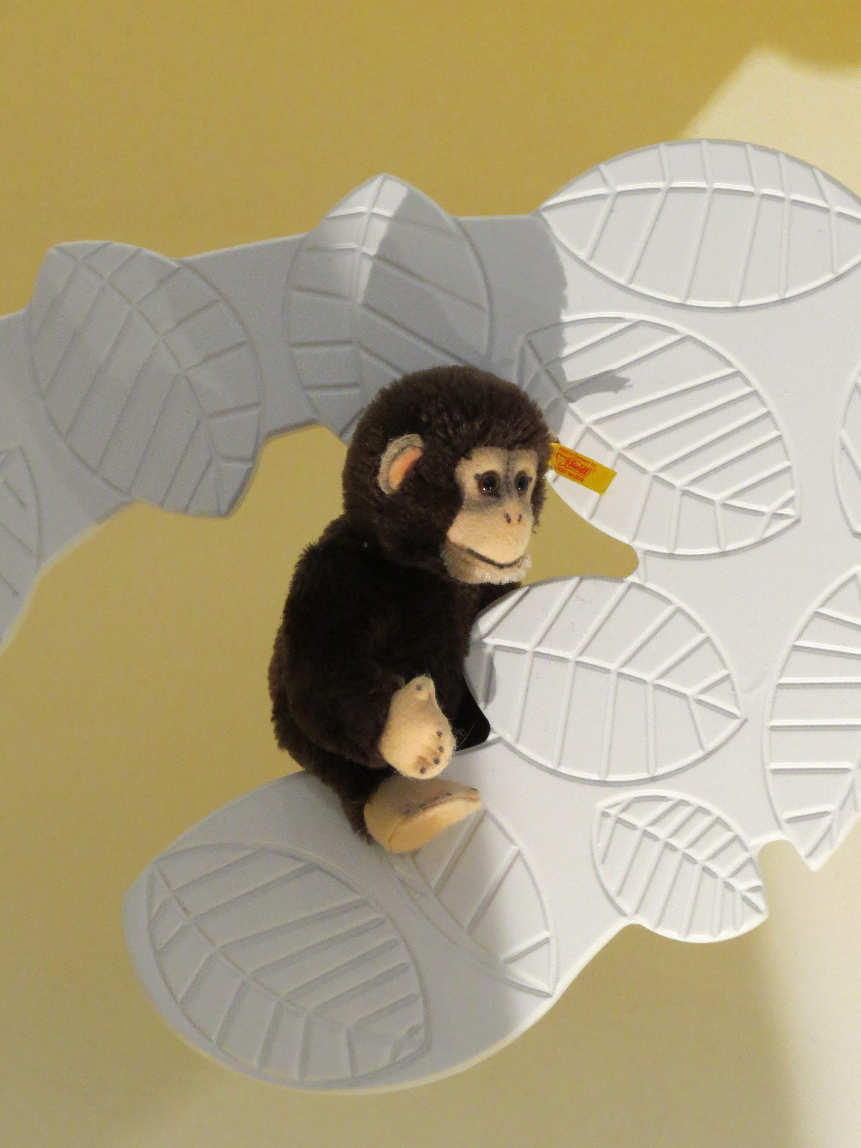 Gambar Sayap Bermain Museum Monyet Beruang Teddy Seni Anak