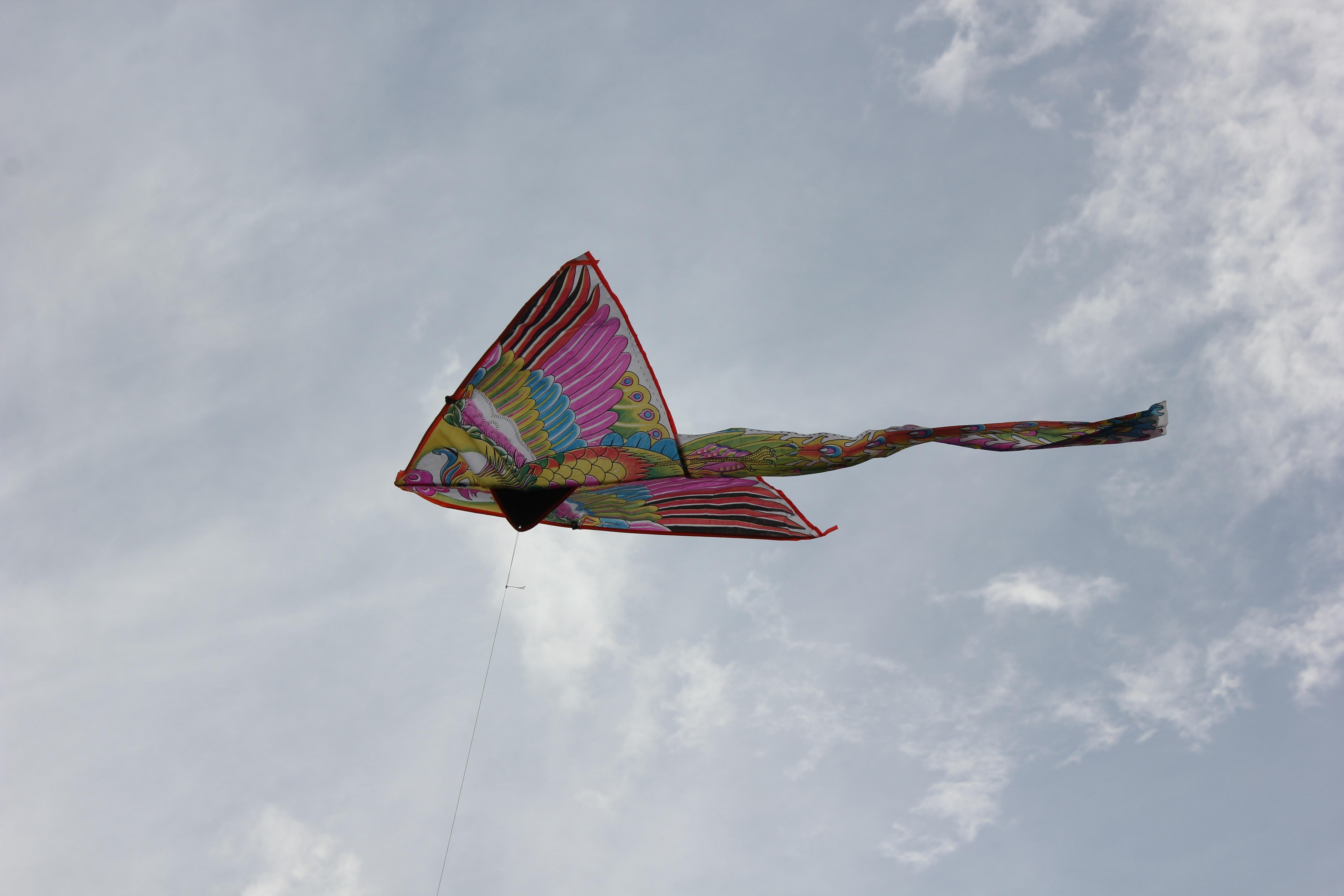 открытки картинка фото воздушного змея комплекс включает