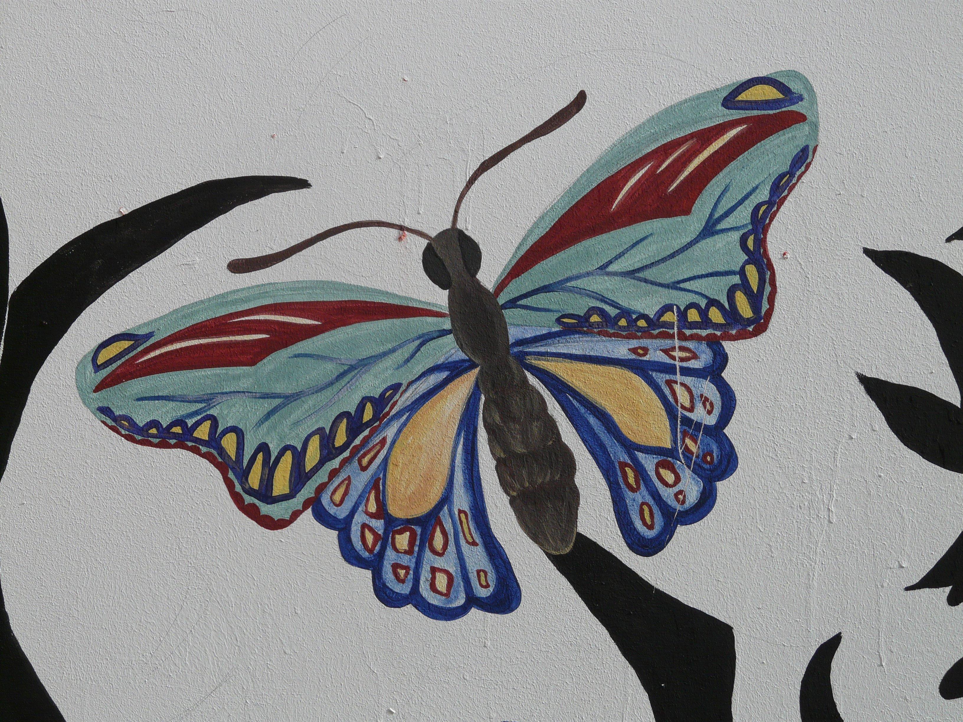 Gambar Sayap Jendela Hewan Serangga Biru Invertebrata Seni