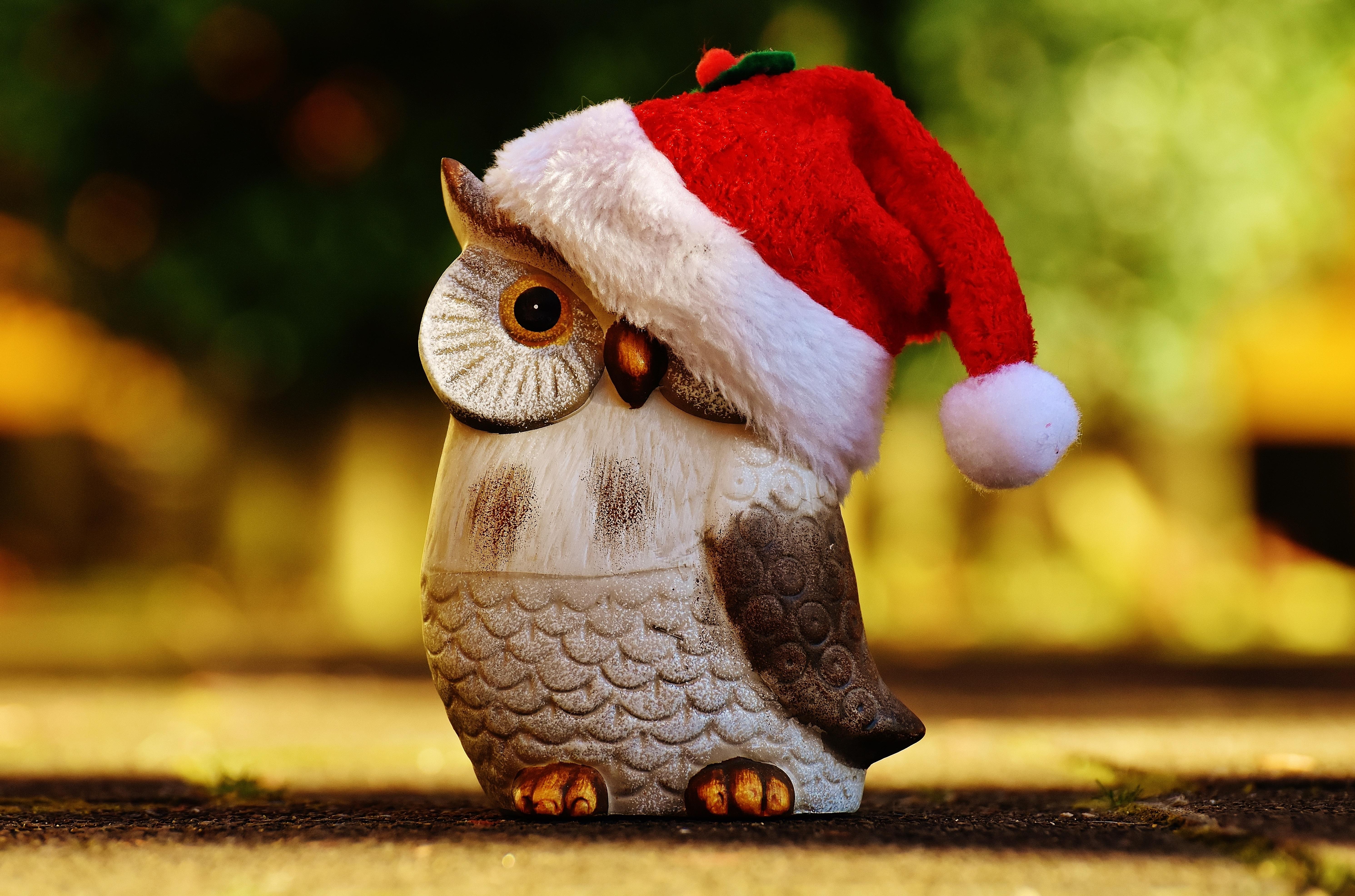 Картинка сова новый год