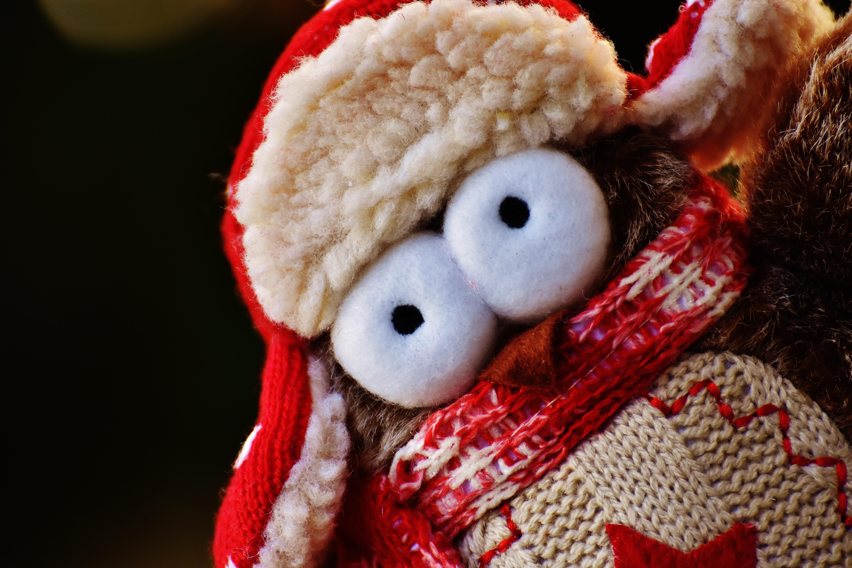 Kostenlose foto : Winter, Vogel, süß, niedlich, Dekoration, rot ...