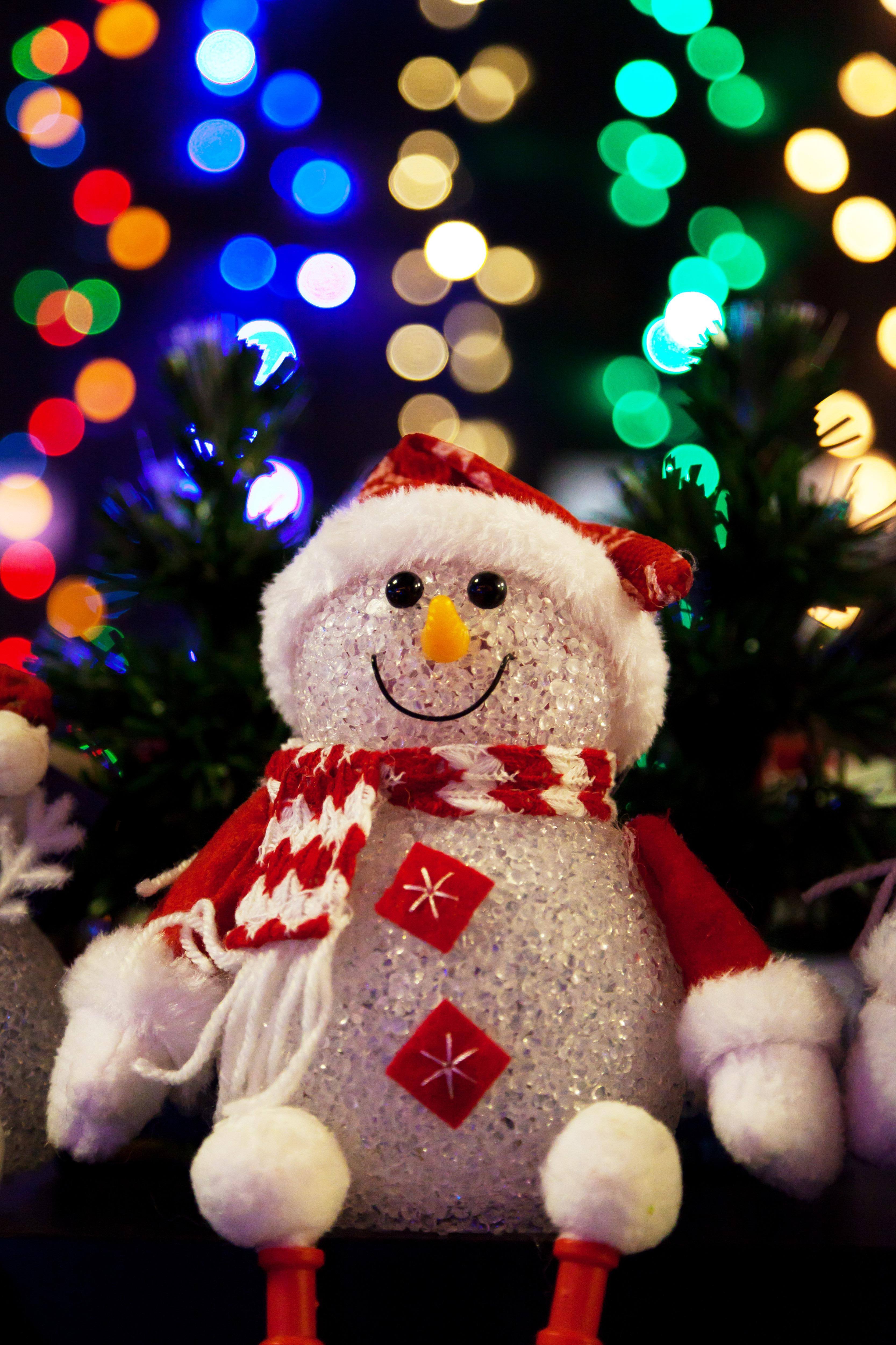 Kostenlose foto : Winter, niedlich, dunkel, Feier, Eis, Dekoration ...