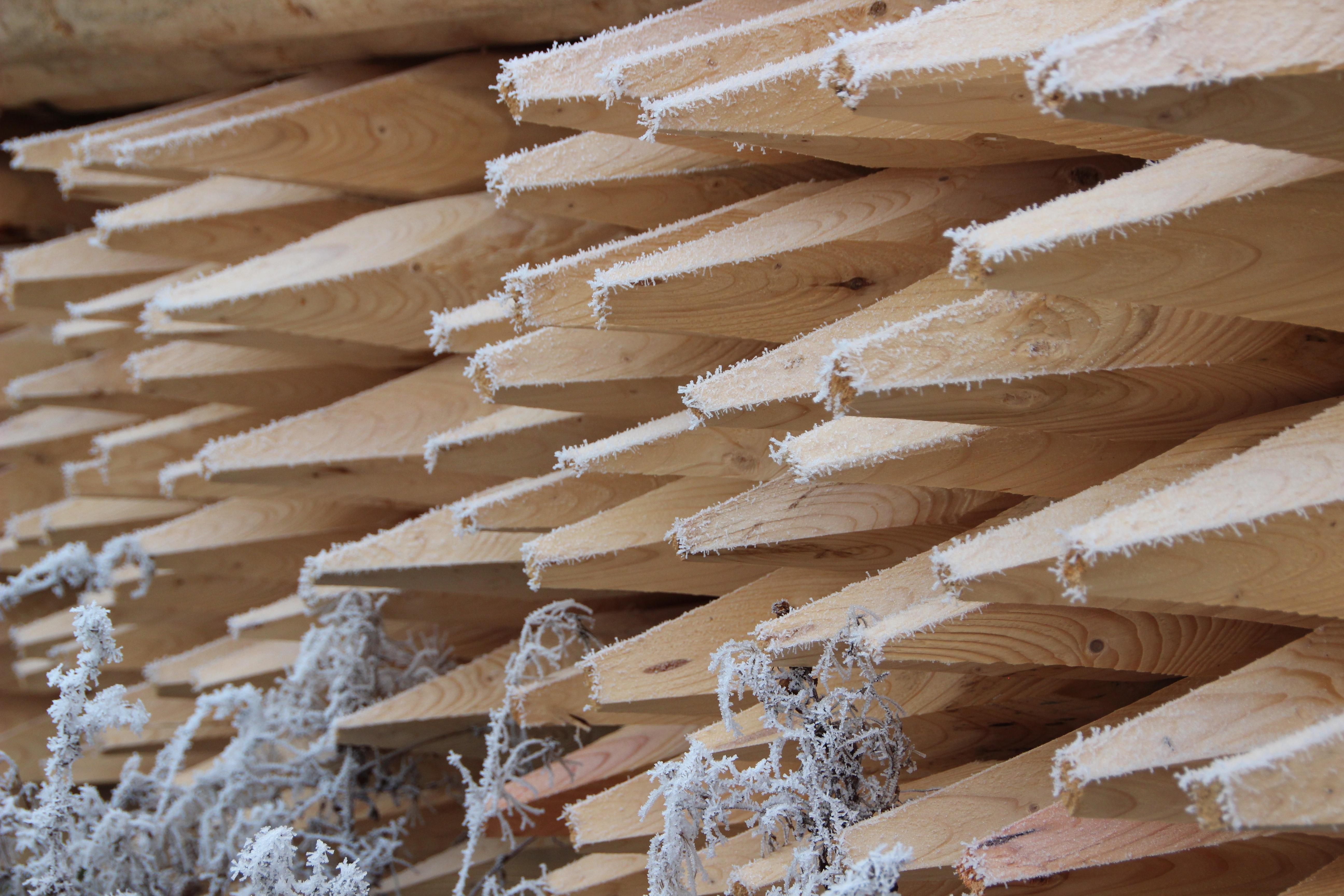 Fotos gratis : invierno, piso, pared, haz, maderas, material, bosque ...
