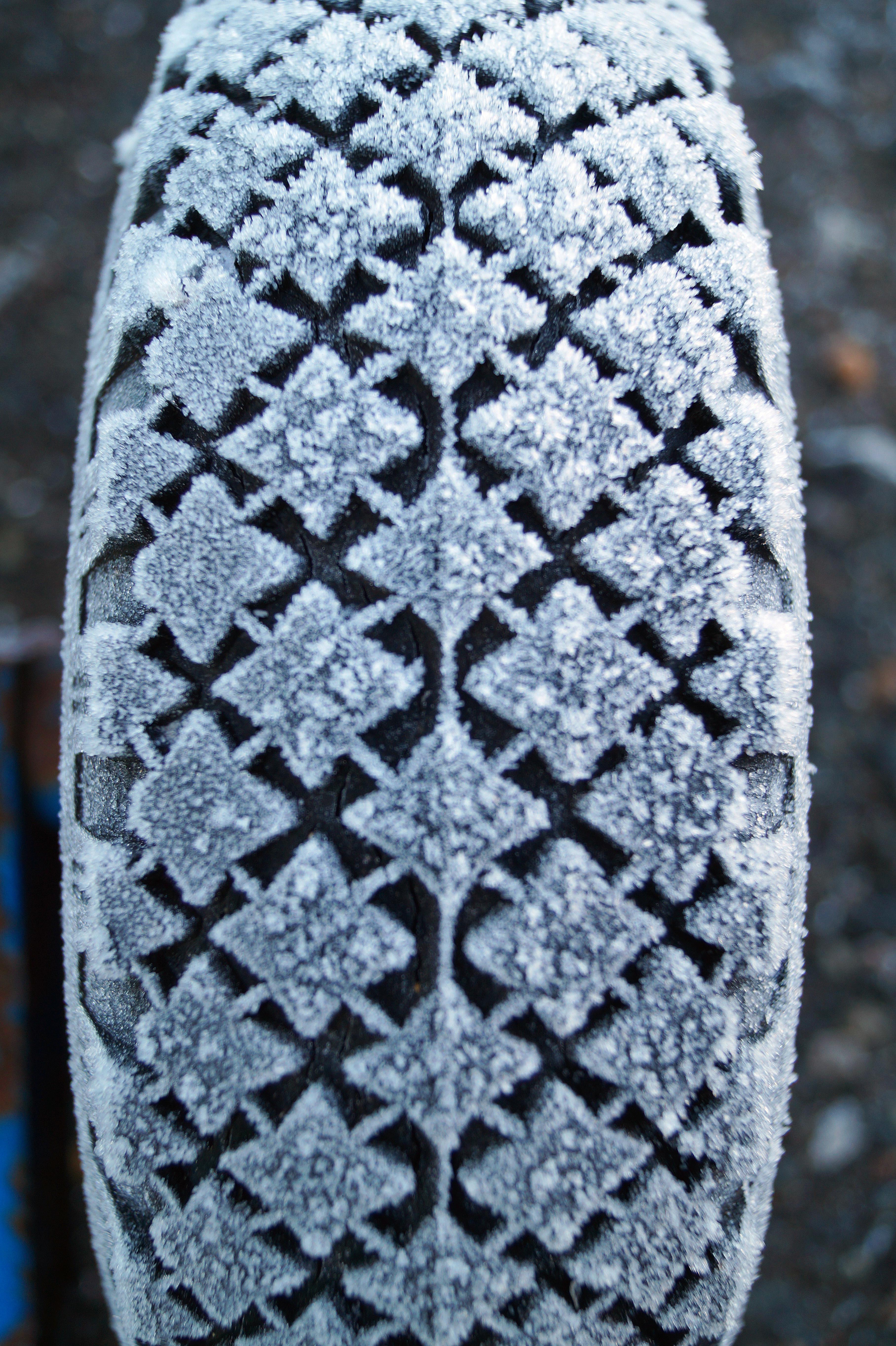 Kostenlose foto : Winter, Blume, Eis, Muster, Herbst, Spitze, blau ...
