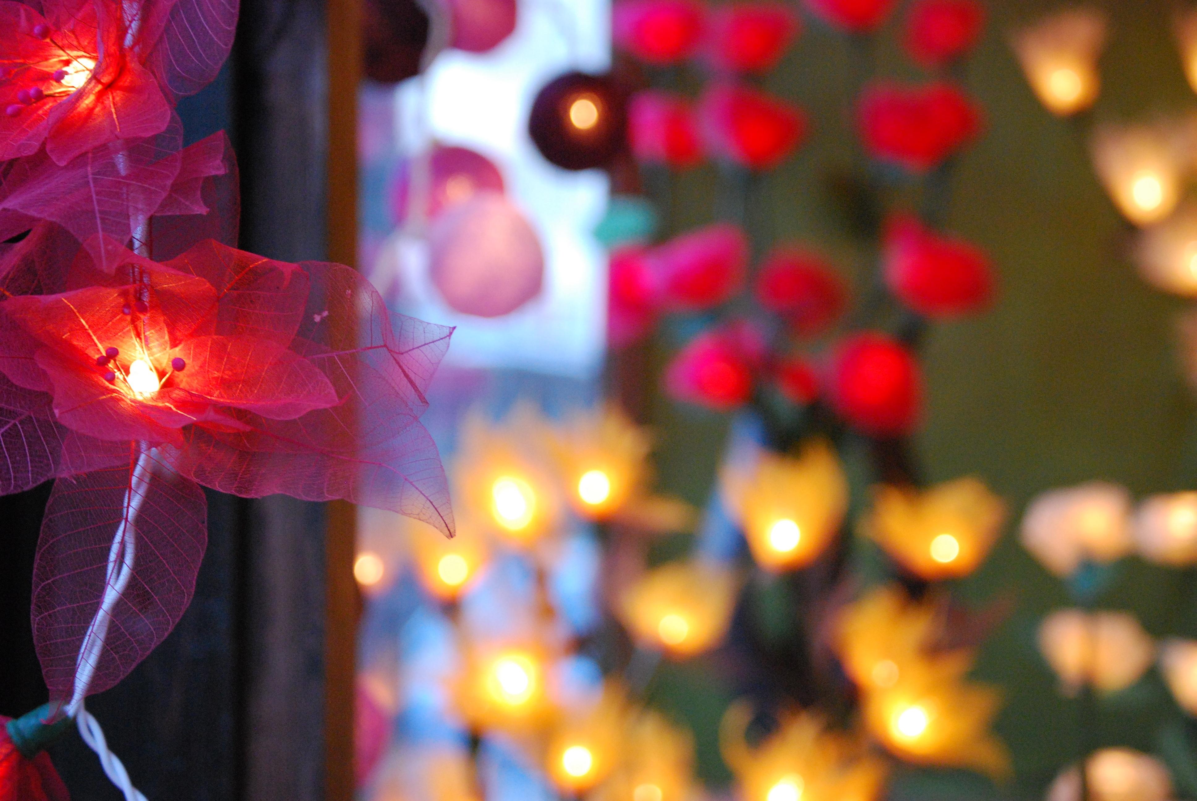 téli fény virág virágszirom dekoráció piros szín ünnep Karácsony világítás  Karácsonyi dekoráció Lámpák tervezés Németország karácsonyi c22f749494