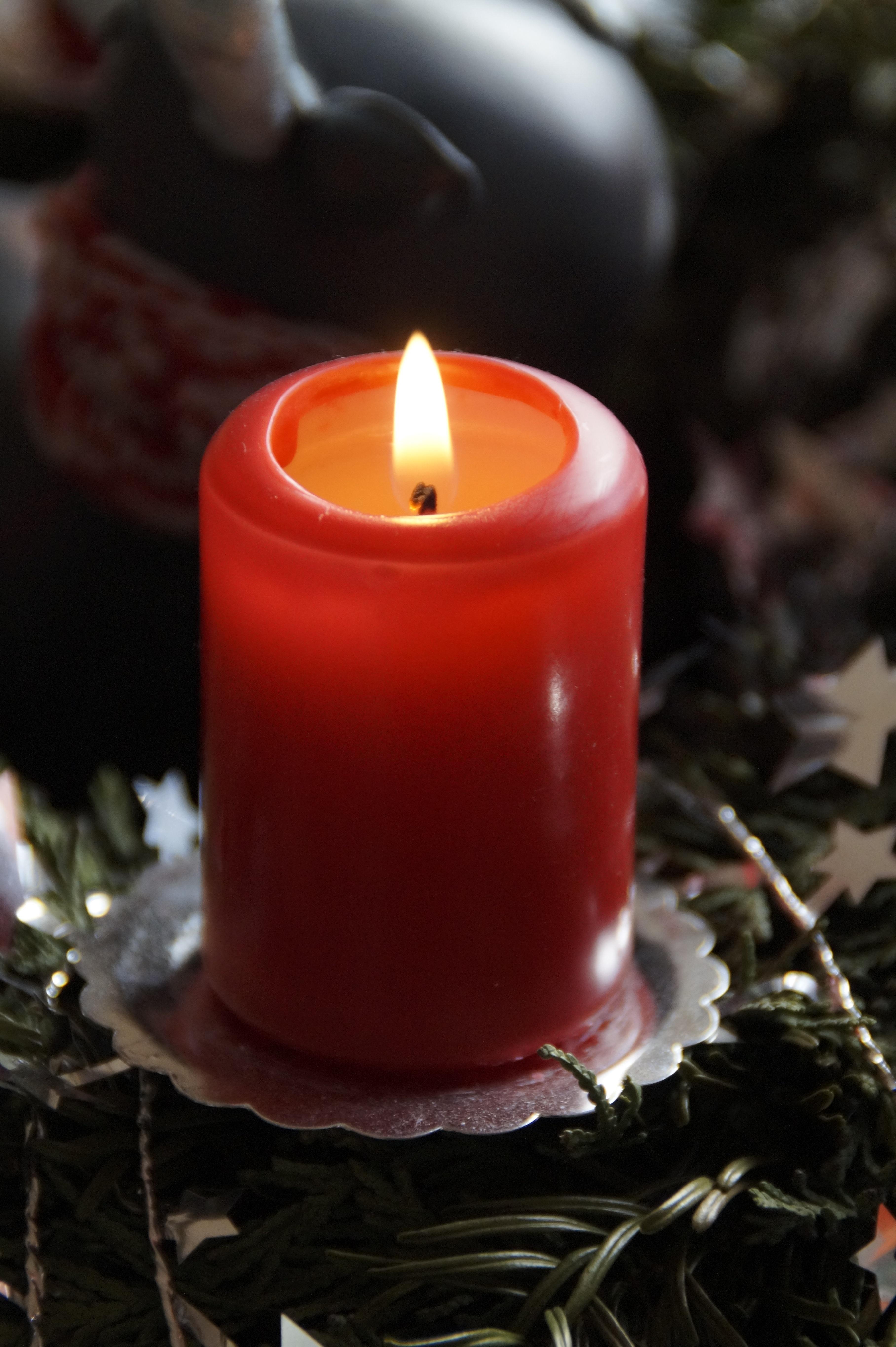 kostenlose foto winter licht blume rot flamme kerze. Black Bedroom Furniture Sets. Home Design Ideas