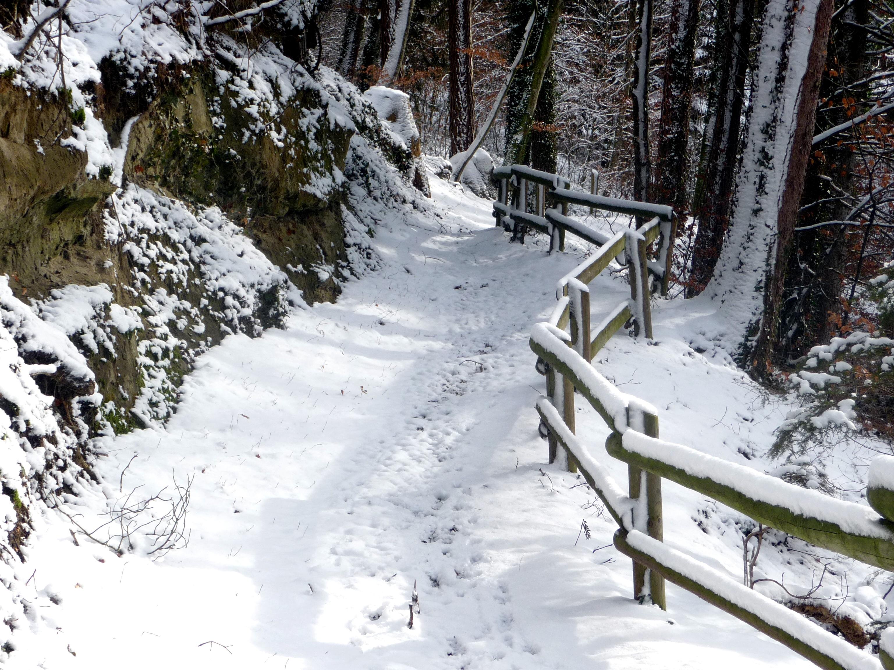 Images gratuites hiver neige paysage d 39 hiver la - Photos de neige gratuites ...