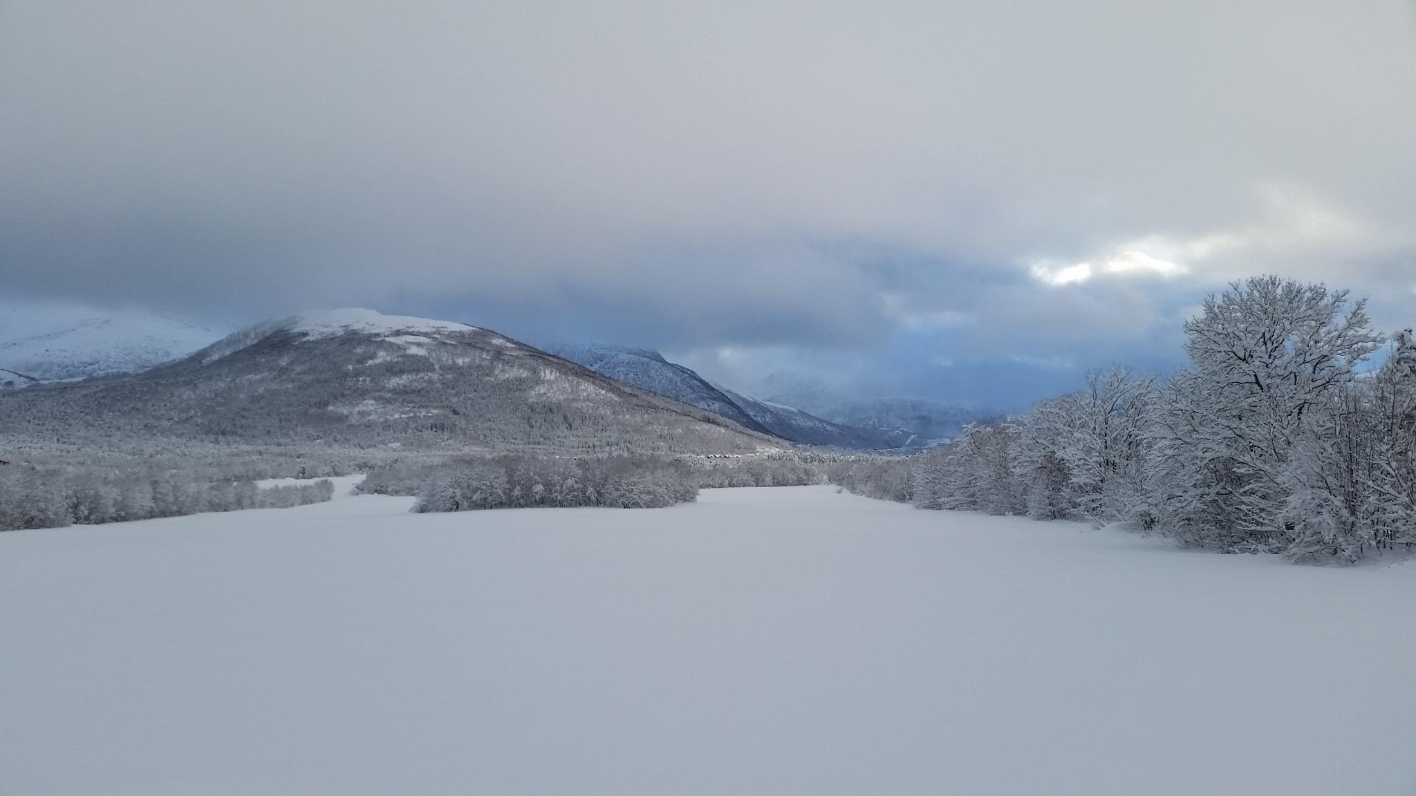 mùa đông Phong cảnh mùa đông Nhiếp ảnh phong cảnh Scandinavia Nordic Na Uy trong cơn