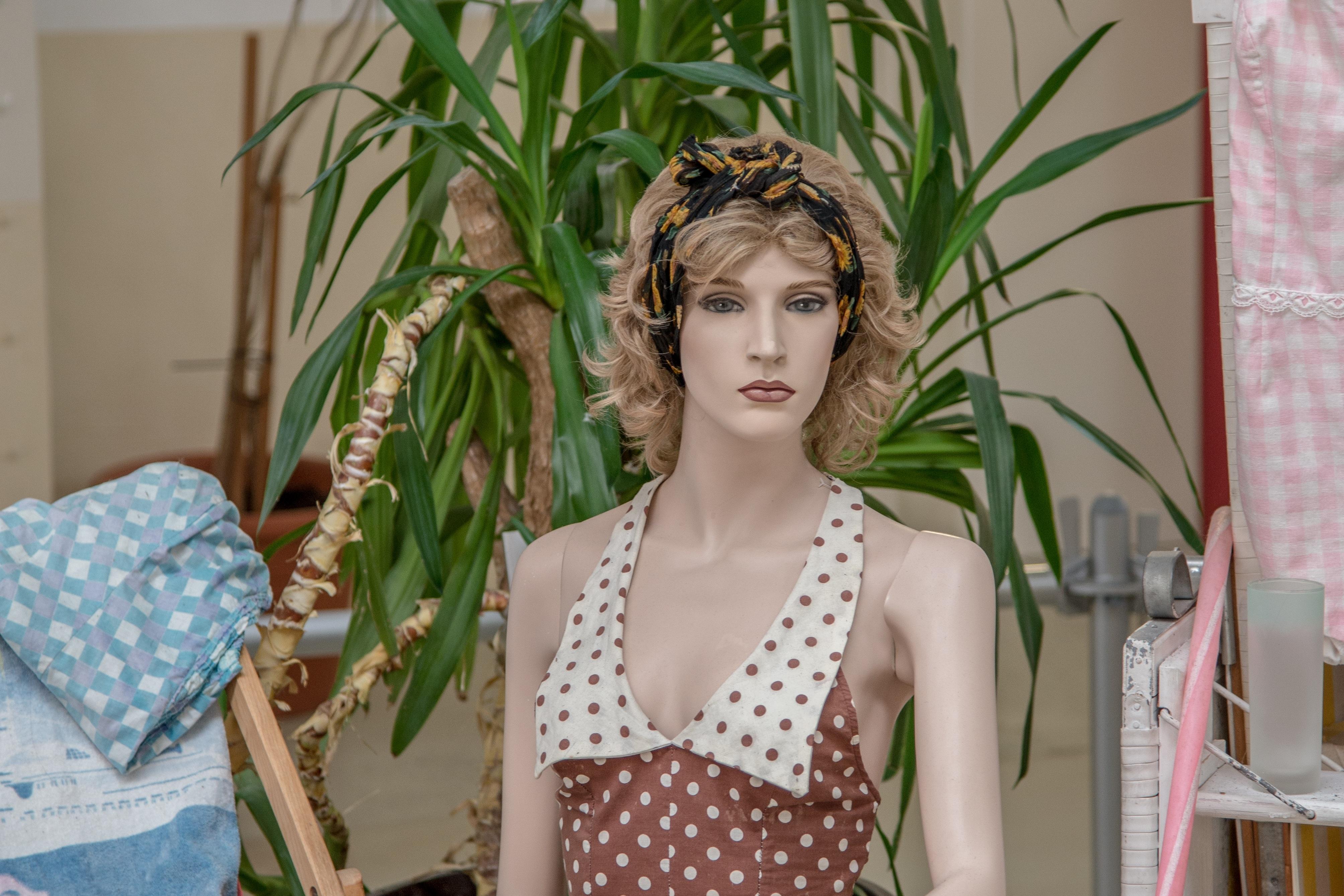 Gratis afbeeldingen : vrouw haar bloem decoratie patroon