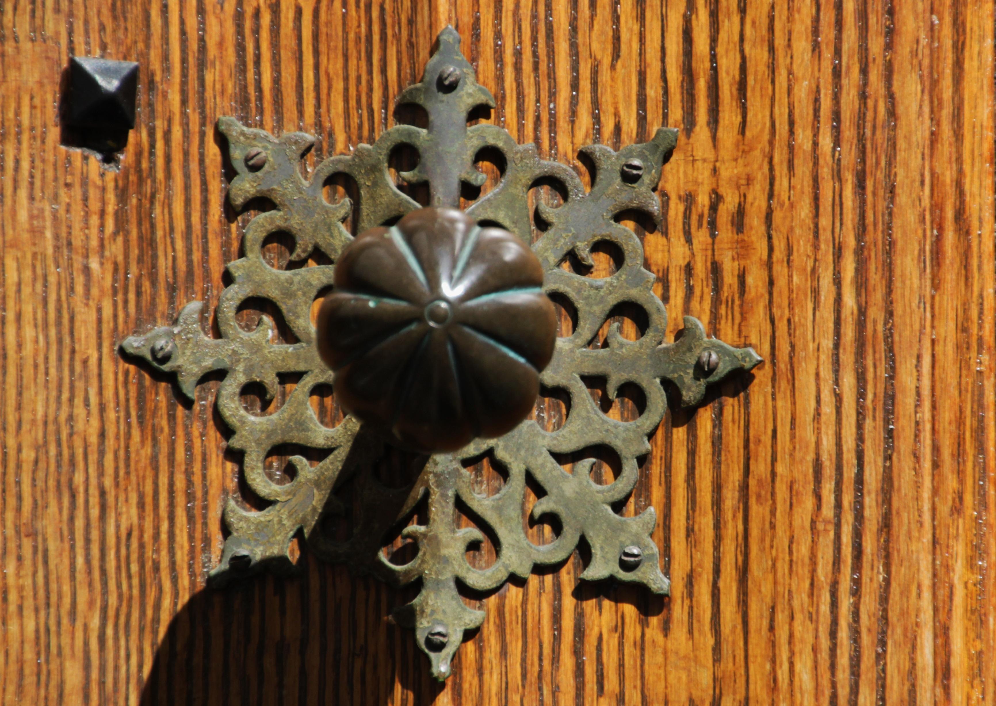 Free Images Antique Leaf Flower Old Close Ornament Deco