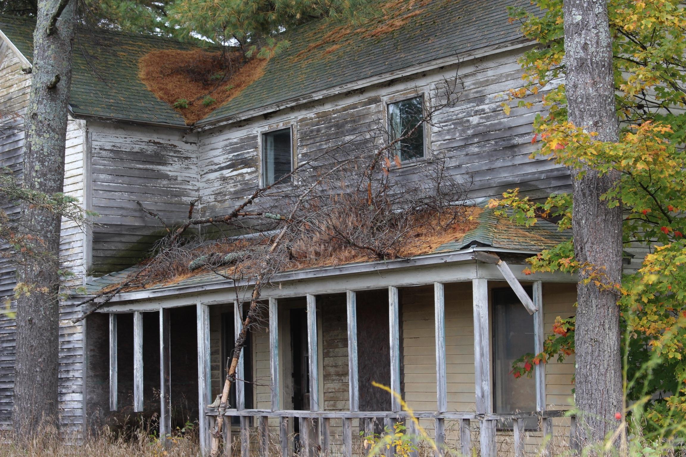 Fotos gratis : campo, techo, edificio, granero, país, cobertizo ...