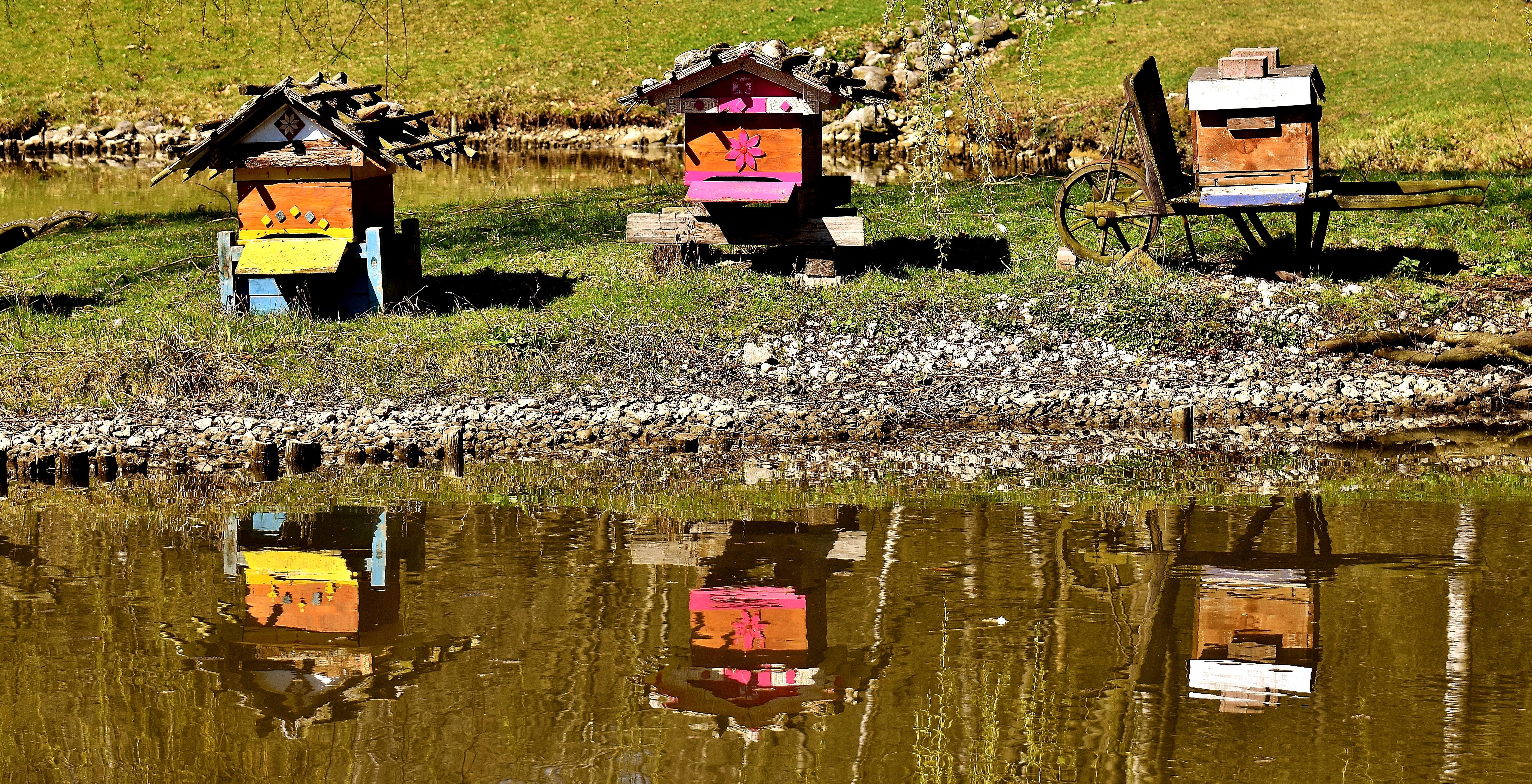 Images gratuites bois ferme l 39 automne bo te - Images d animaux sauvages gratuites ...