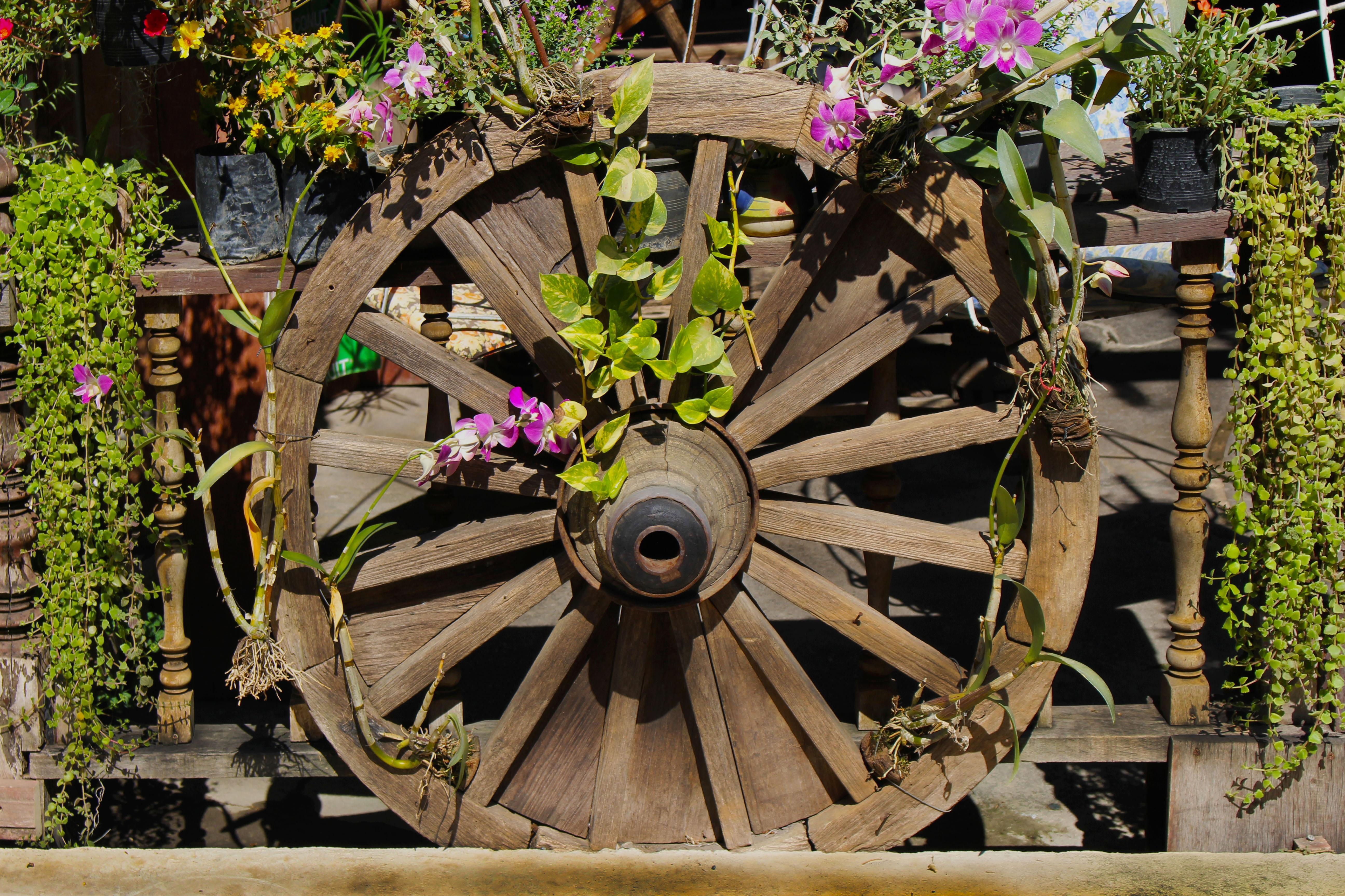 Free Images : wood, farm, vintage, antique, retro, round, flower ...