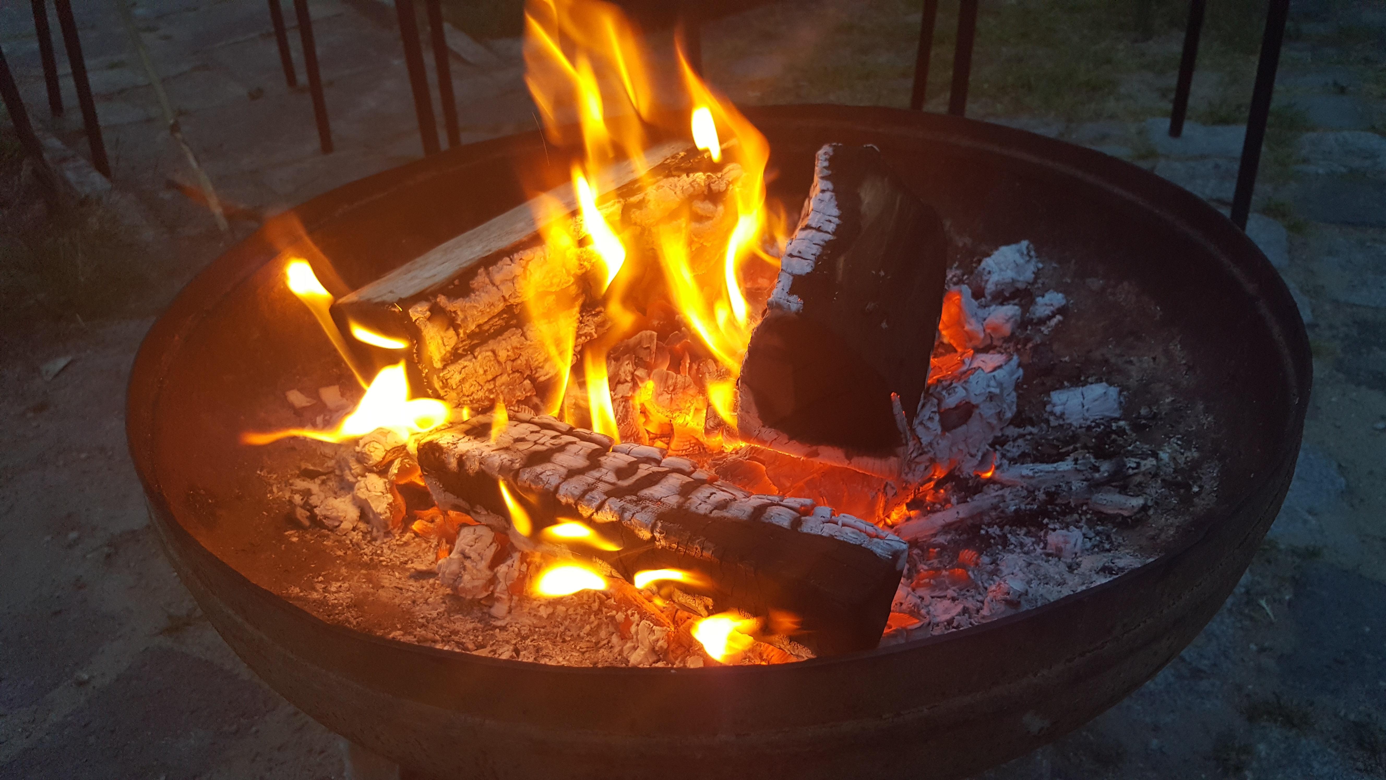 무료 이미지 : 목재, 연기, 불꽃, 장작, 캠프 불, 조명, 고기, 야외 ...