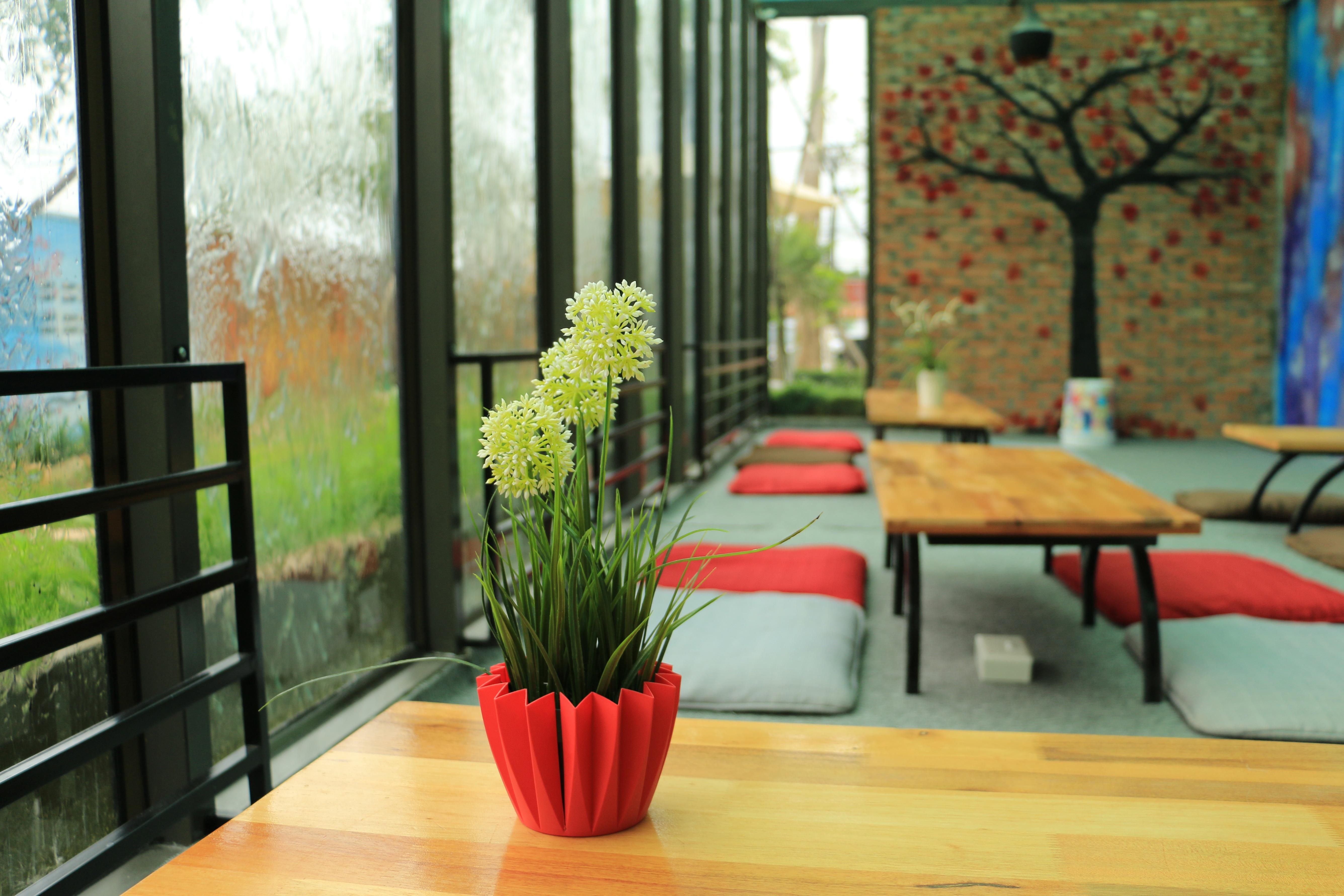 Decorar patio interior piso gallery of with decorar patio - Decorar patio interior piso ...