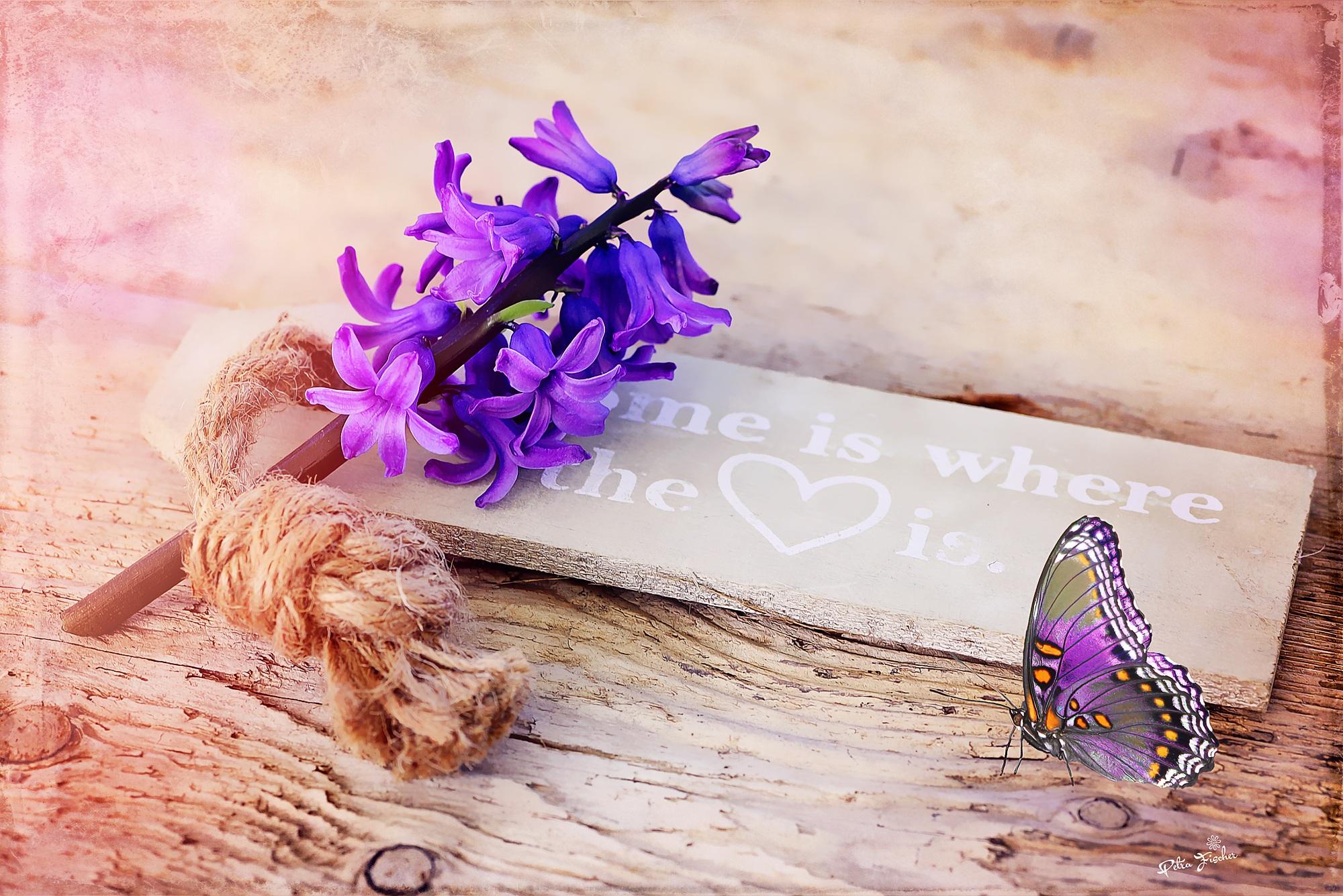 Fotoğraf Ahşap Mor Taçyaprağı Kelebek Kapat Malzeme Boyama
