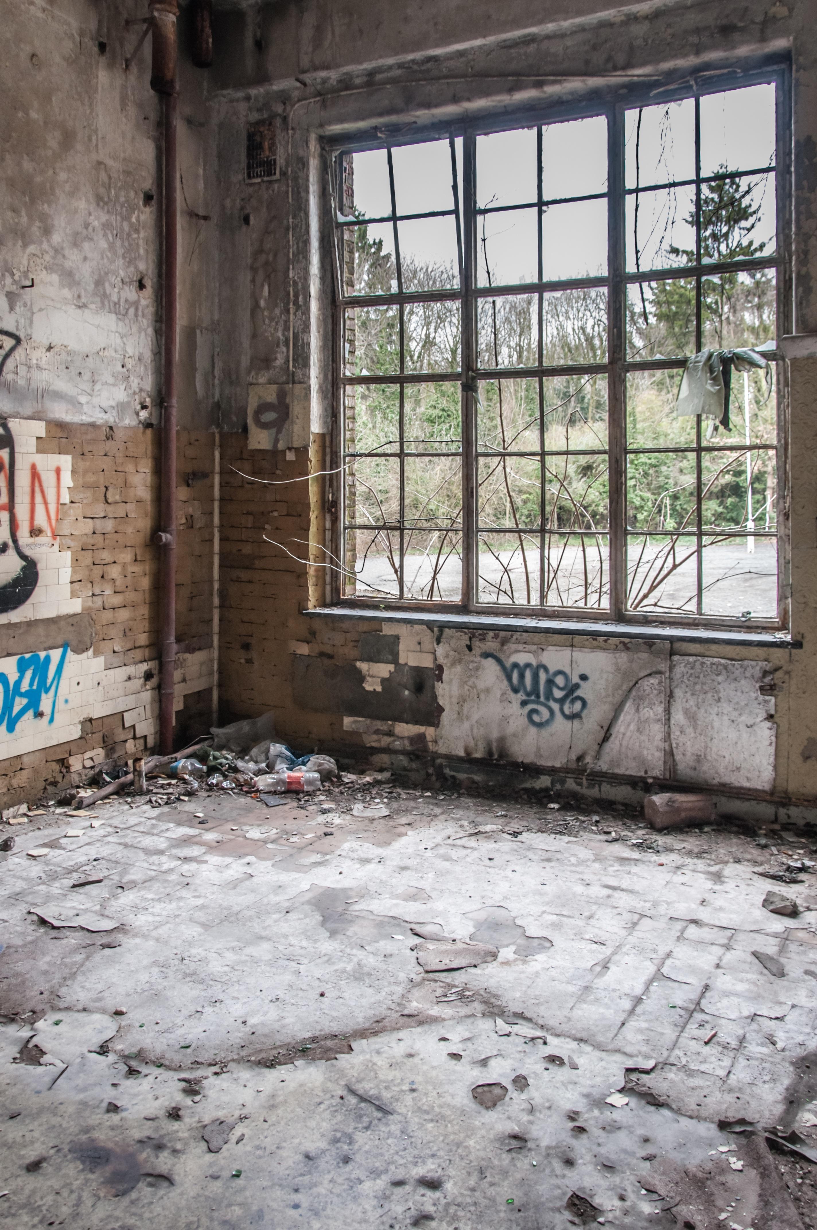 Bois maison sol fenêtre bâtiment vieux maison mur chalet arrière cour propriété graffiti porte design