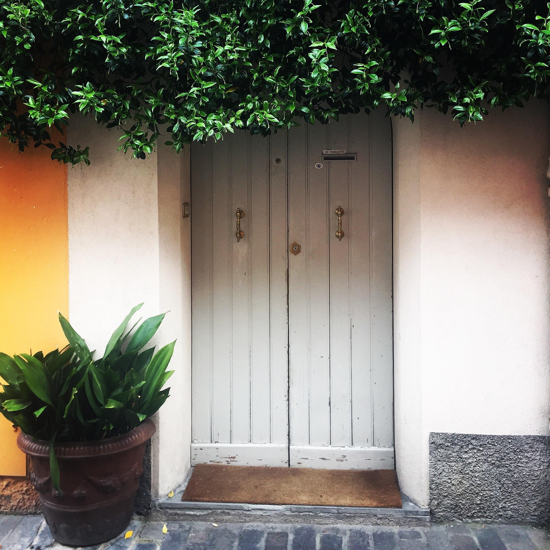 gambar : kayu, rumah, jendela, dinding, hijau, halaman belakang