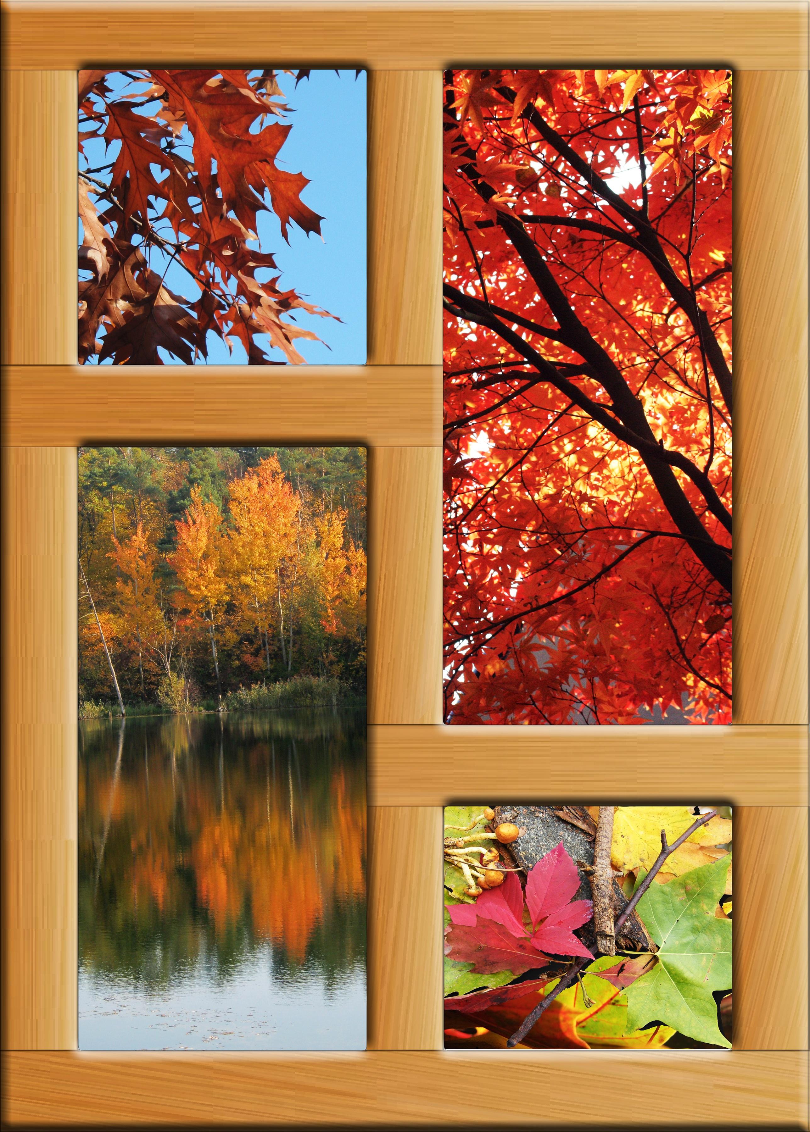 Painting a window with acrylic mafiamedia for Acrylic windows