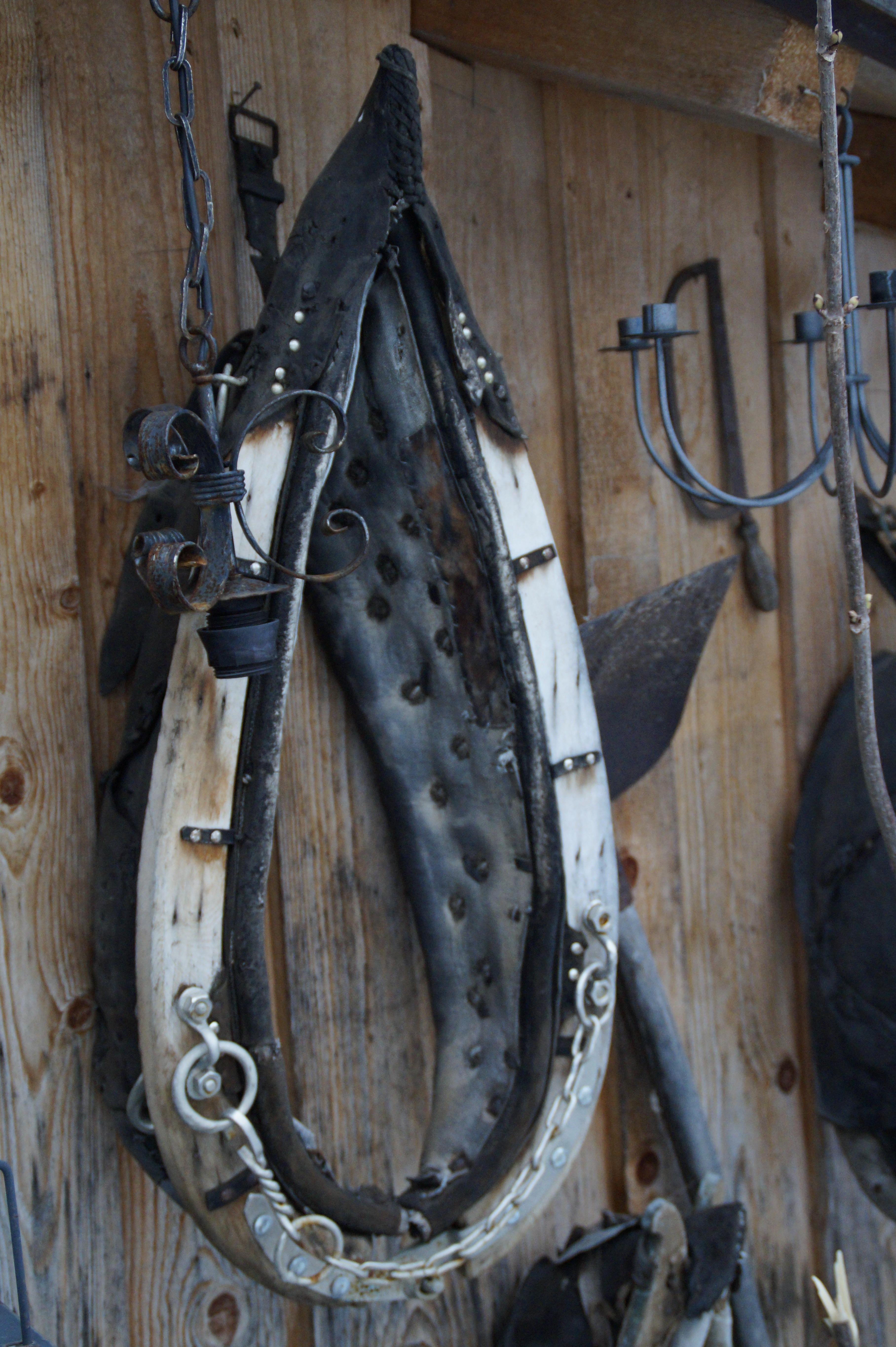 Kostenlose foto : Holz, Leder, Fahrrad, Fahrzeug, Vieh, Zügel ...