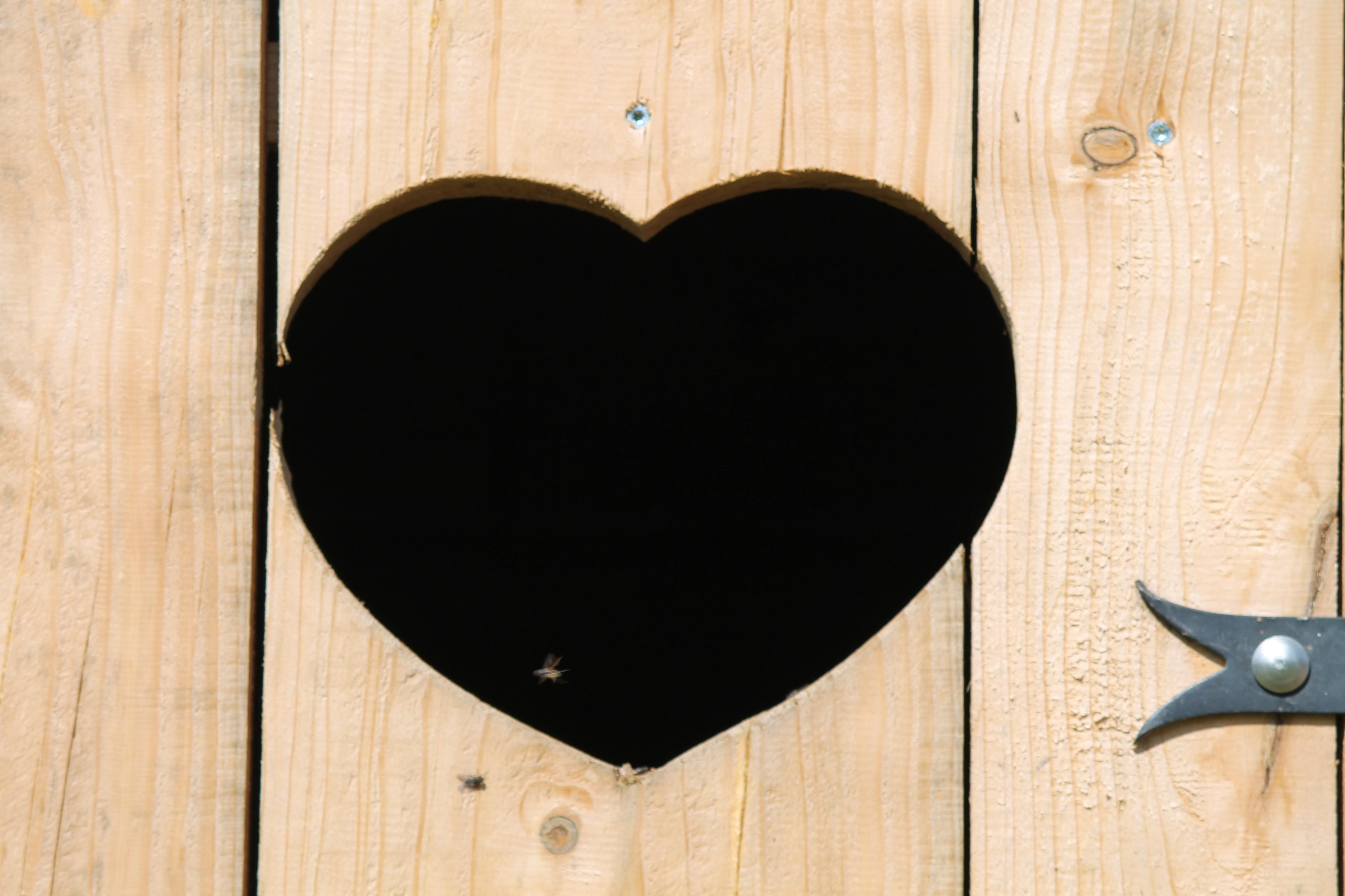 wood love heart romance romantic door goal circle human body wooden door boards moustache organ valentine & Free Images : wood love romance romantic goal circle human ...