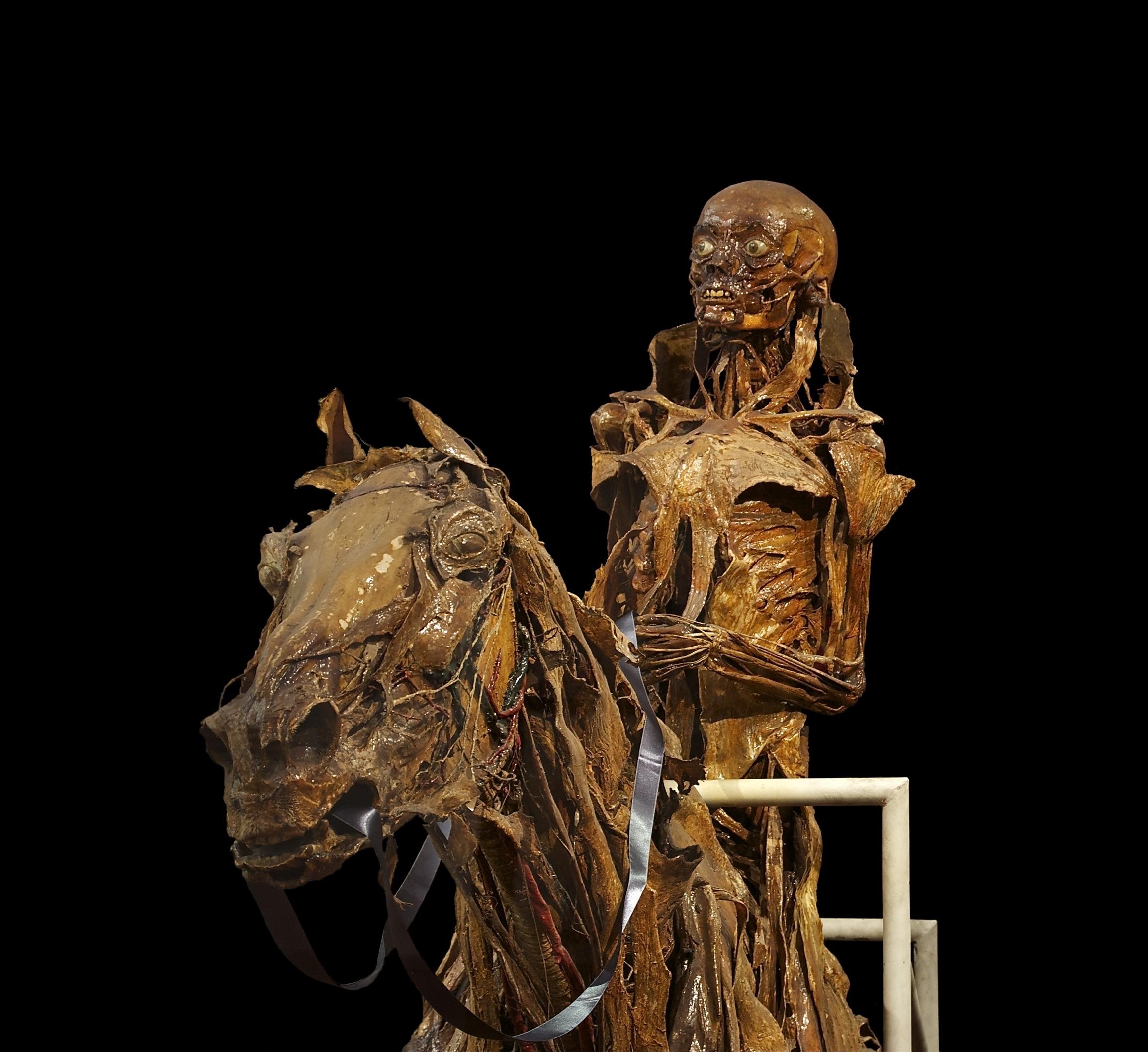 Fotos gratis : madera, Monumento, estatua, caballo, humano, muerto ...