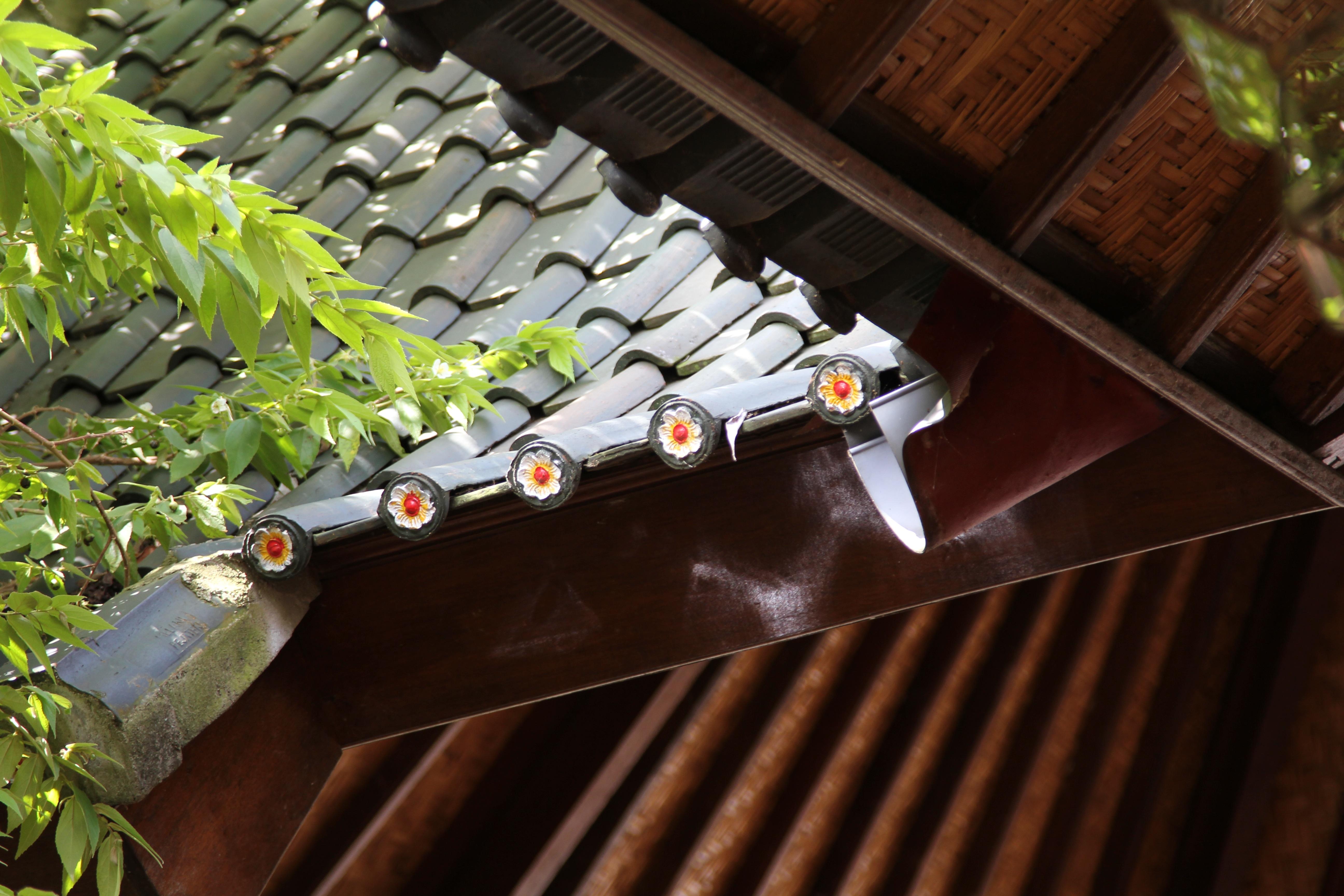 Gratis billeder : træ, tag, tagterrasse, bygning, hjem, konstruktion, grøn, ydre, materiale ...