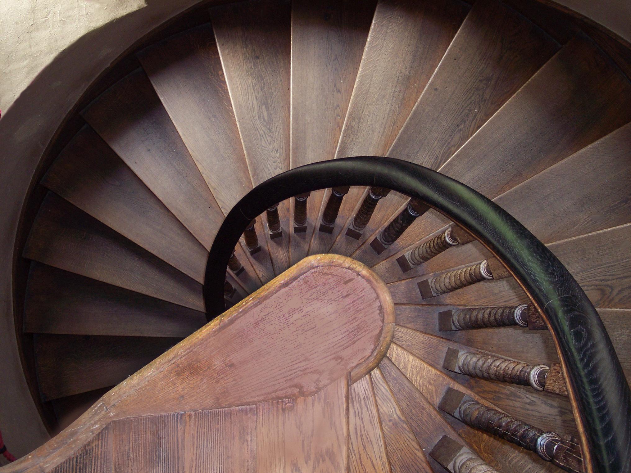 населённый лестницы круг фото набор