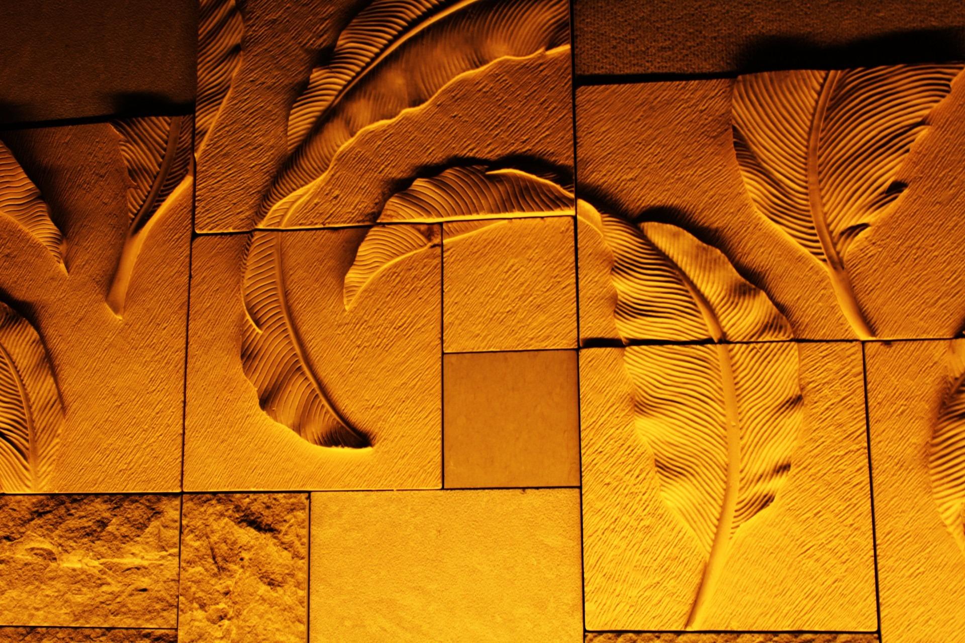 картинки дерево текстура стена Загар цвет Осень
