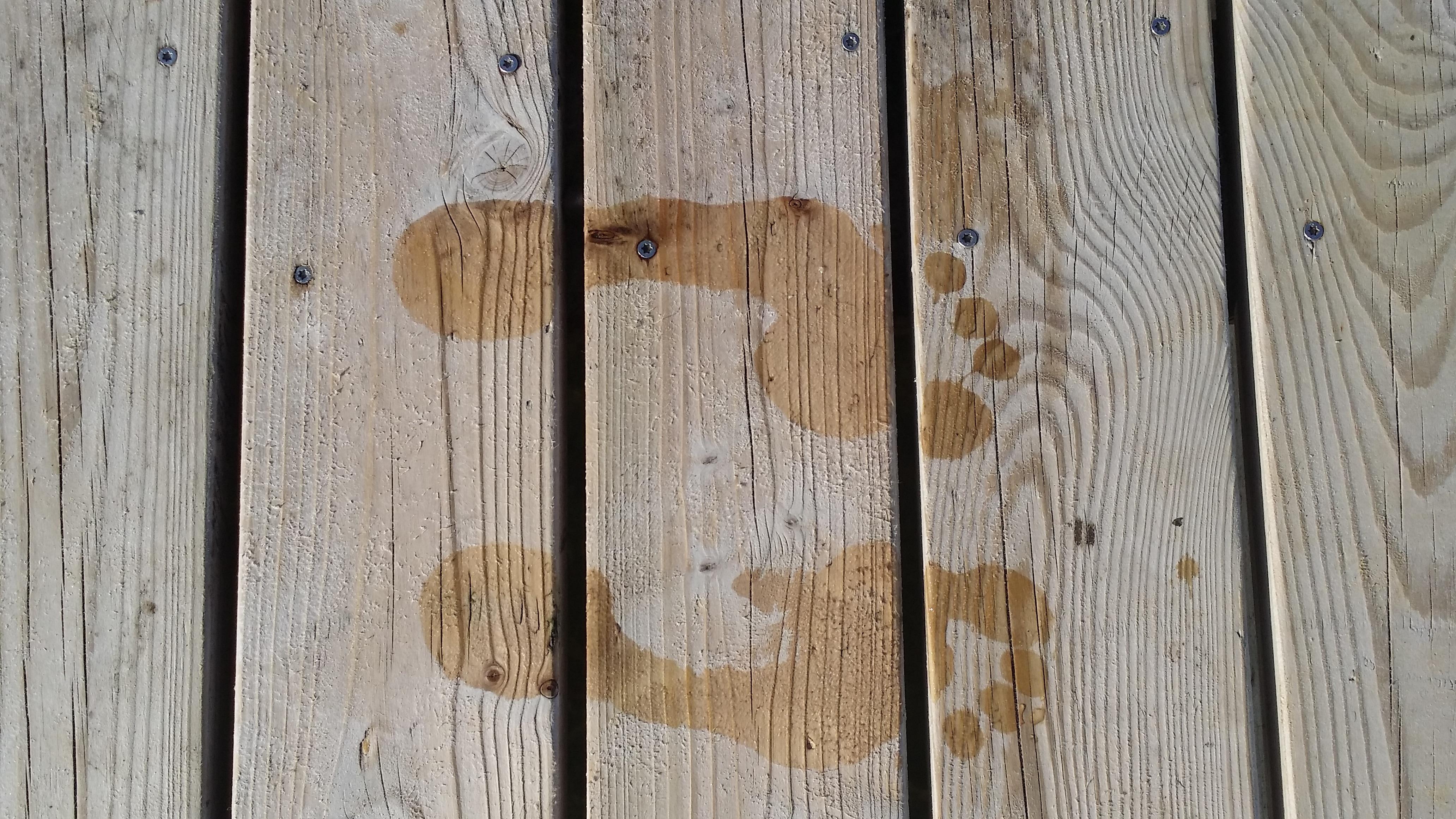 holz textur planke stock fe nass menschlich holz abdrcke hartholz bodenbelag holzboden mann machte objekt laminatboden - Hartholz Oder Laminatboden