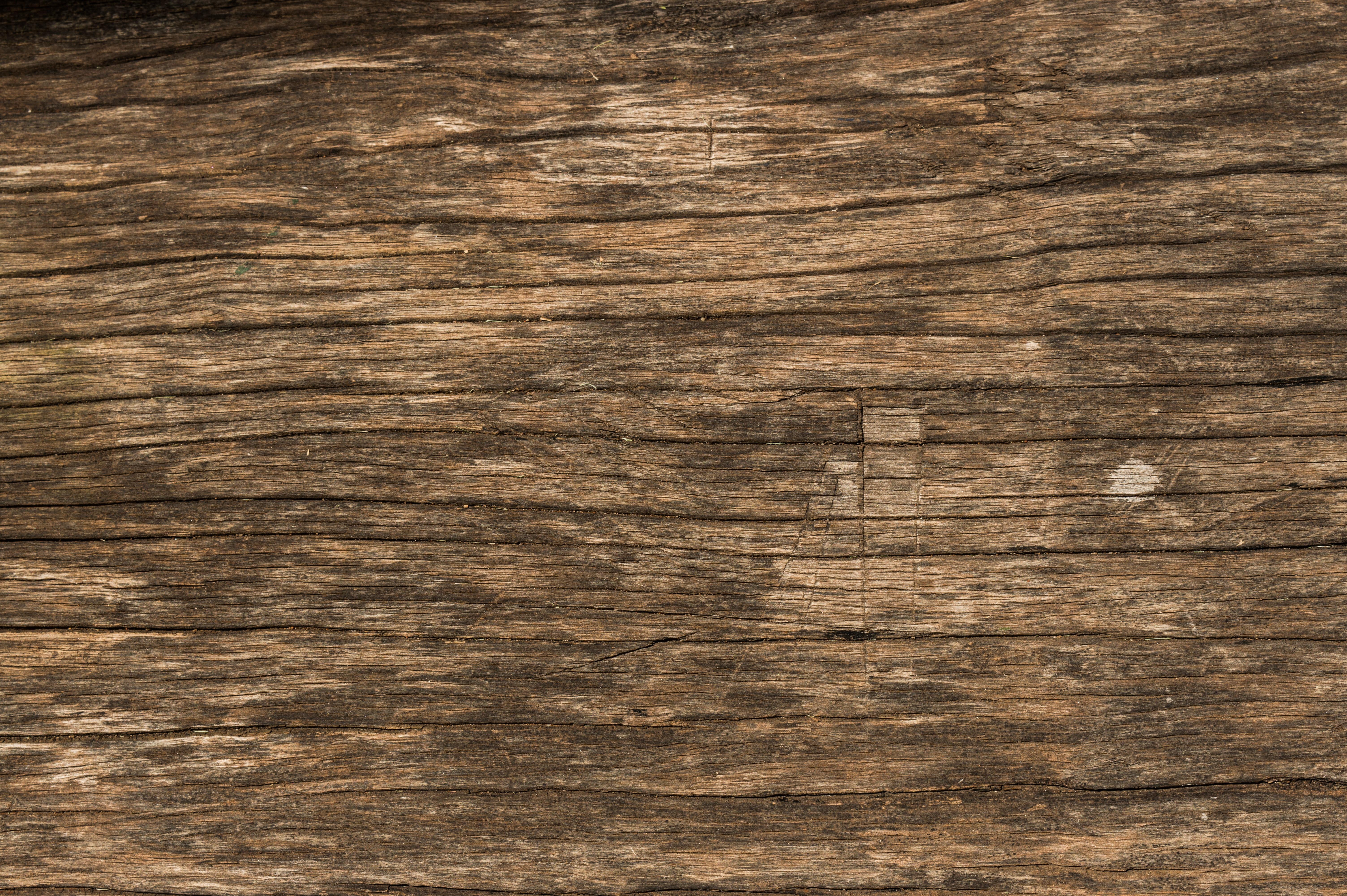 images gratuites texture planche surface bois dur. Black Bedroom Furniture Sets. Home Design Ideas