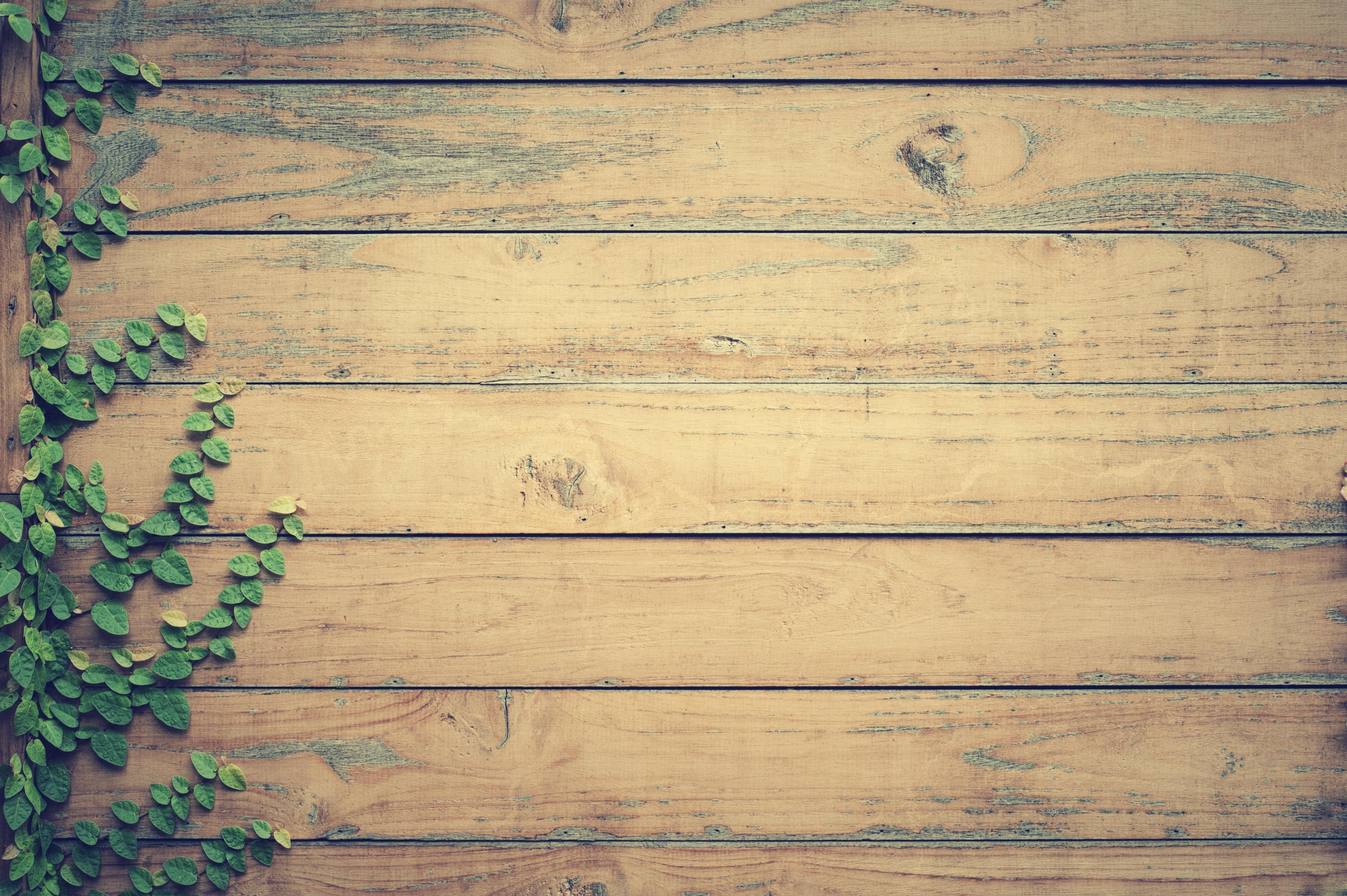 images gratuites texture planche mur mod le bois d 39 oeuvre feuilles bois dur parquet. Black Bedroom Furniture Sets. Home Design Ideas