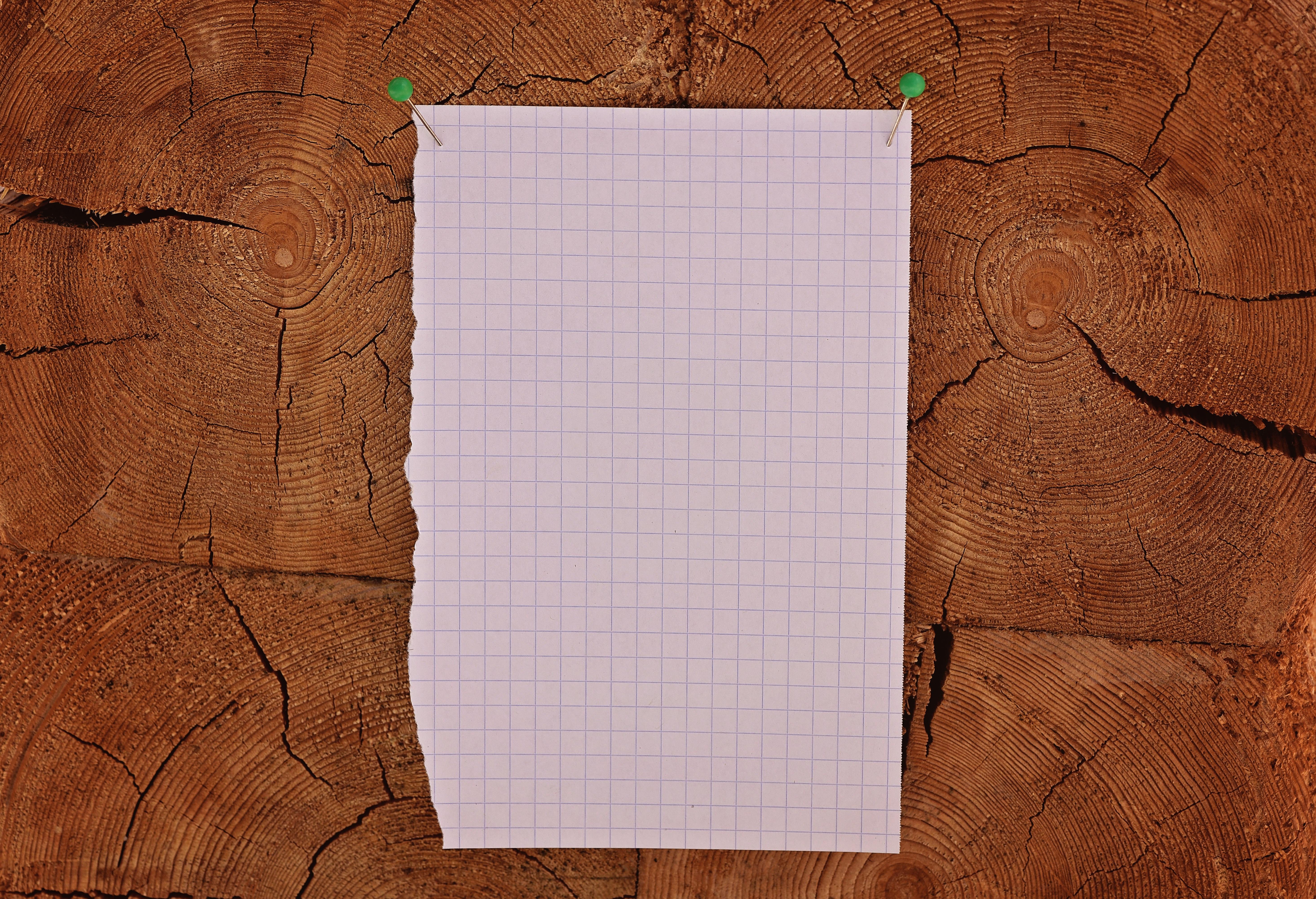 Images Gratuites Bois Texture Mur Bloc Note Mod 232 Le